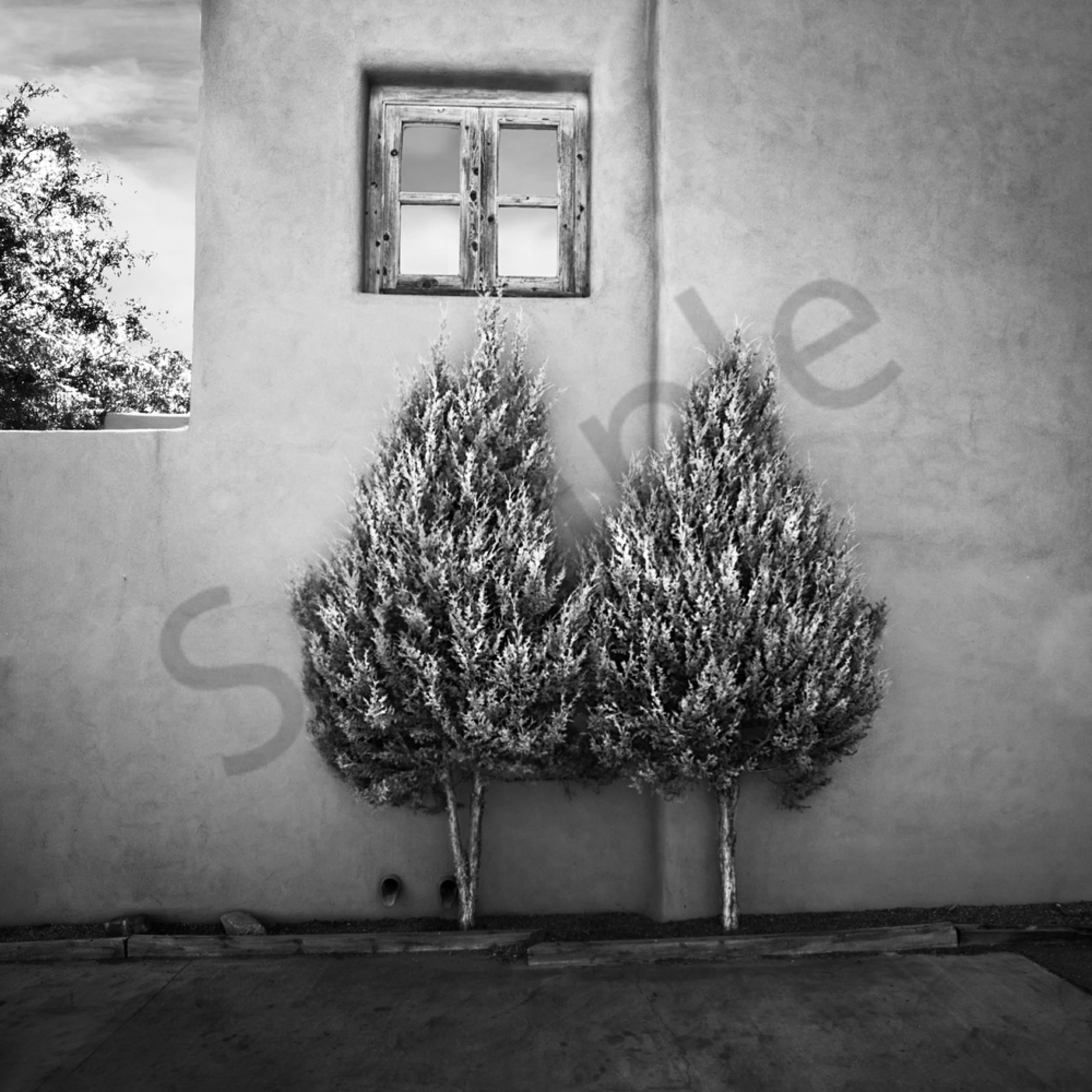 Pair trees etmeho