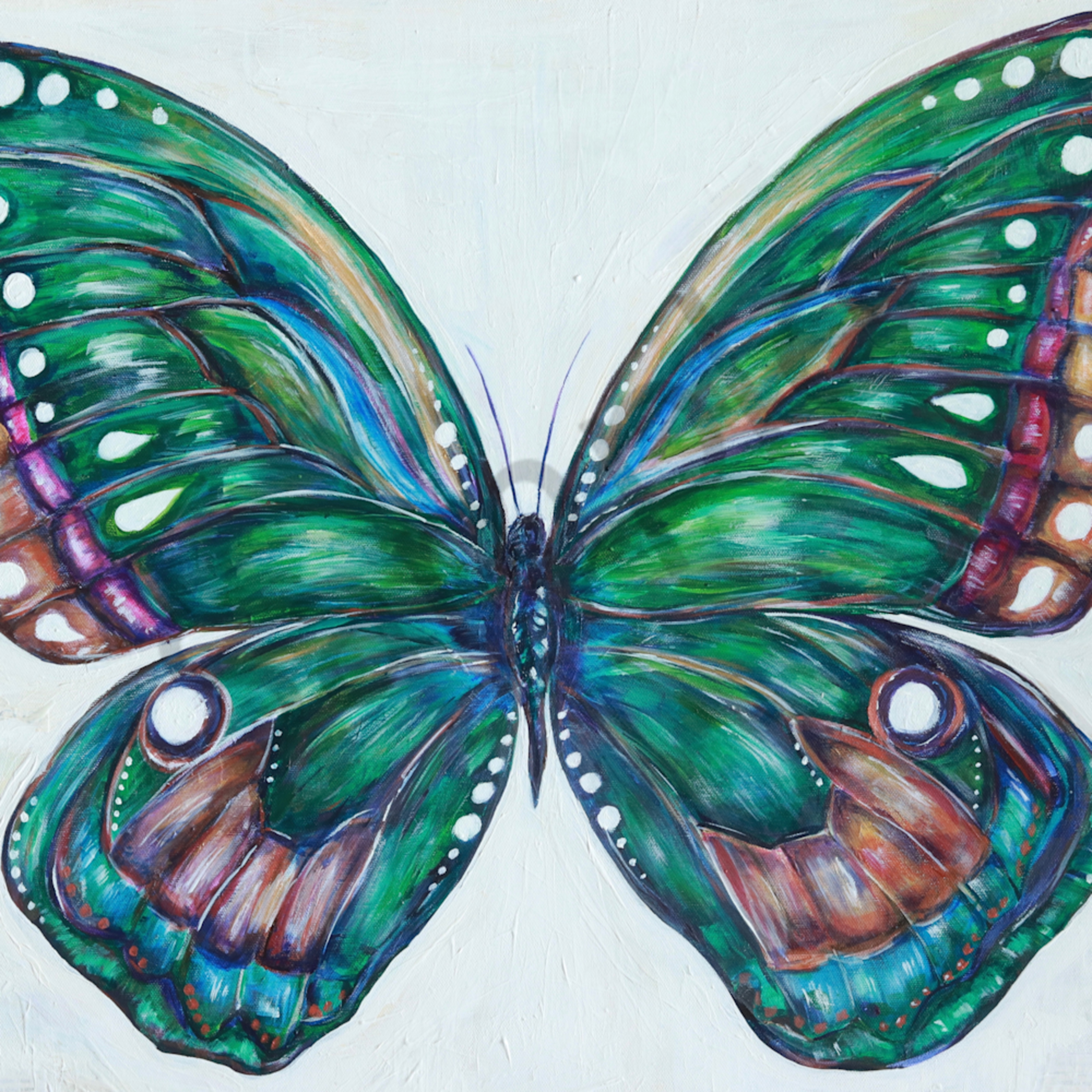Gabriel s butterfly bc5vqz