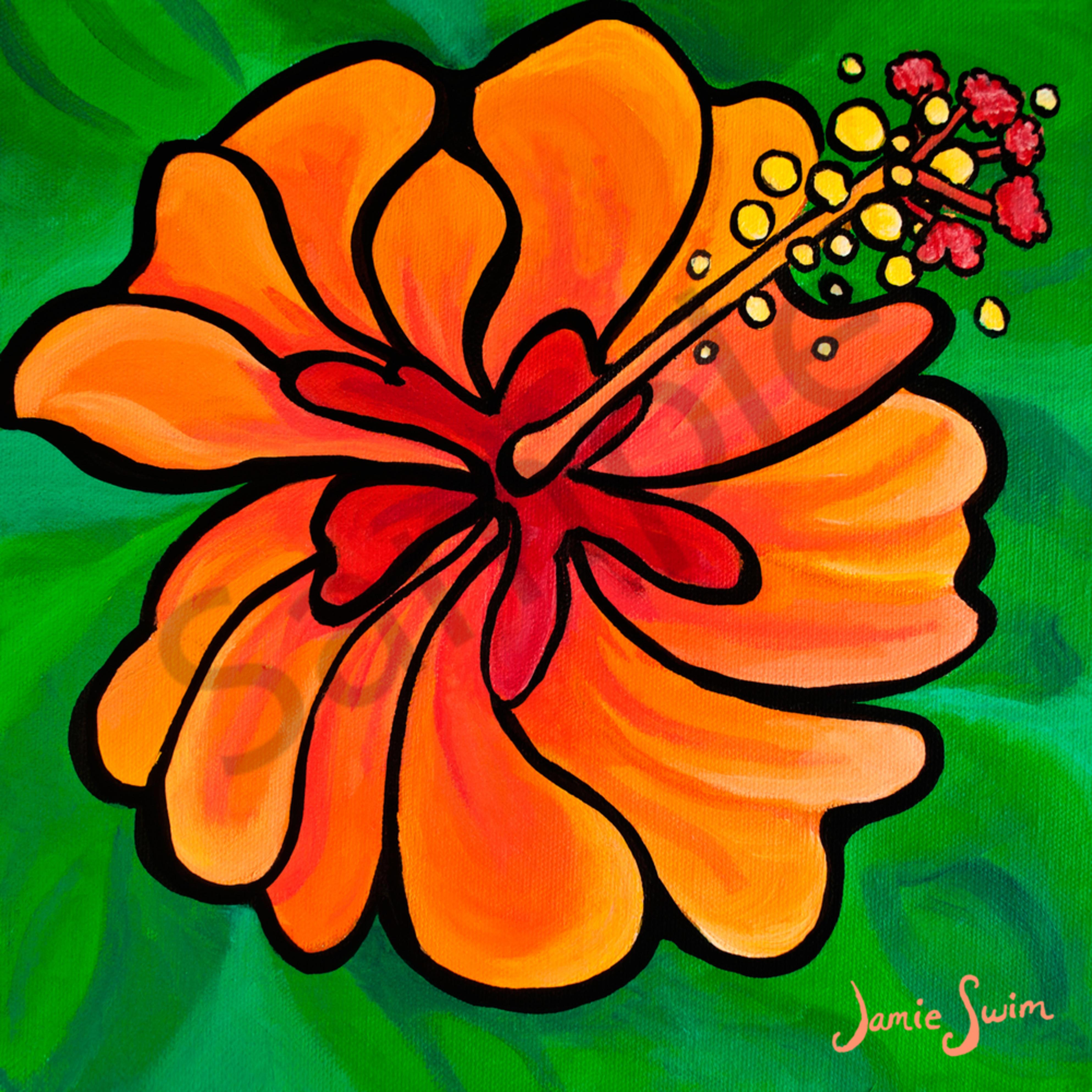 Ai swim orange hibiscus h5ee6b