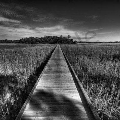 Edisto boardwalk wxlf6x