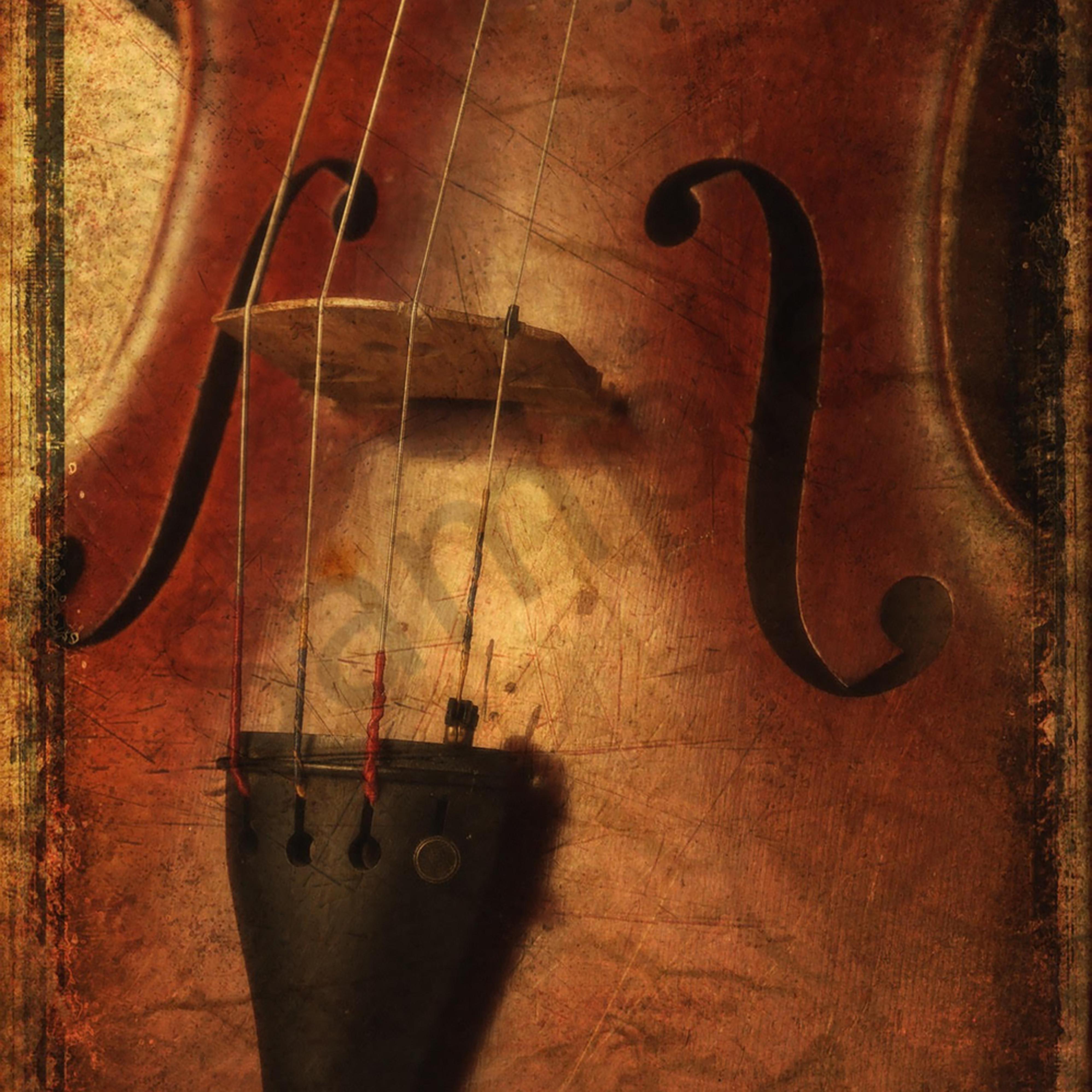 Violin b7mjon