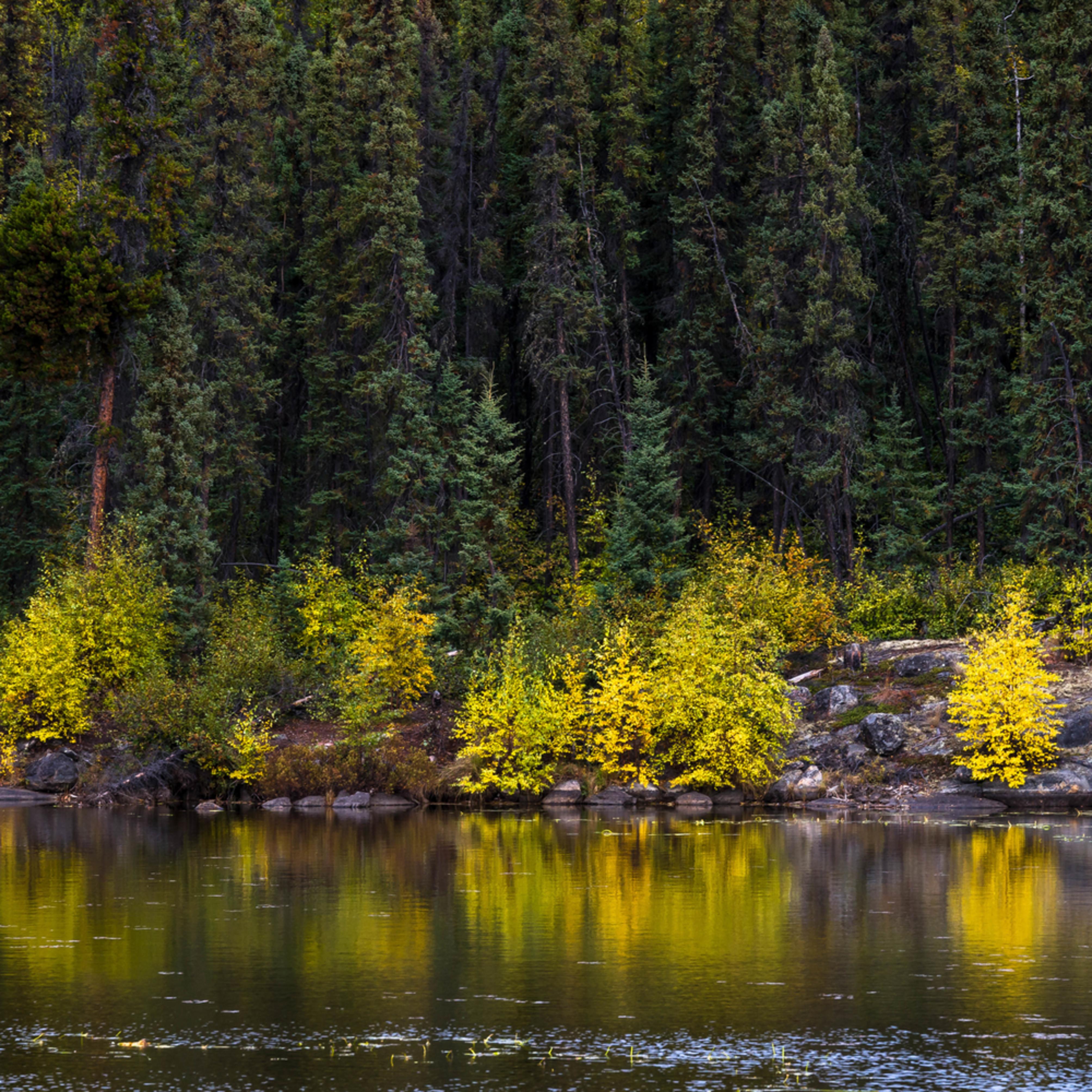 Yellowknifeday1l 15 fyqeov