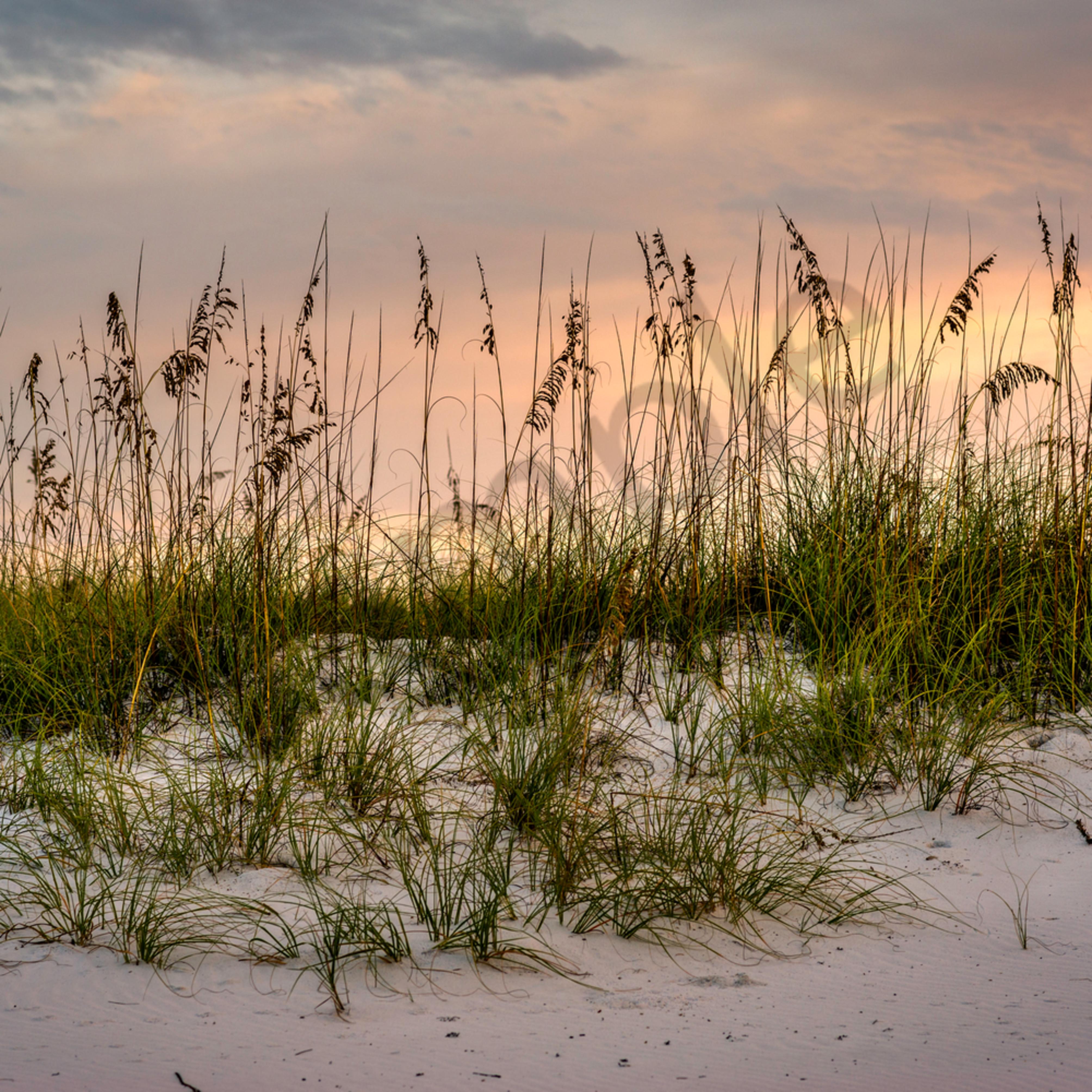 Sand dune sunrise bujsnd