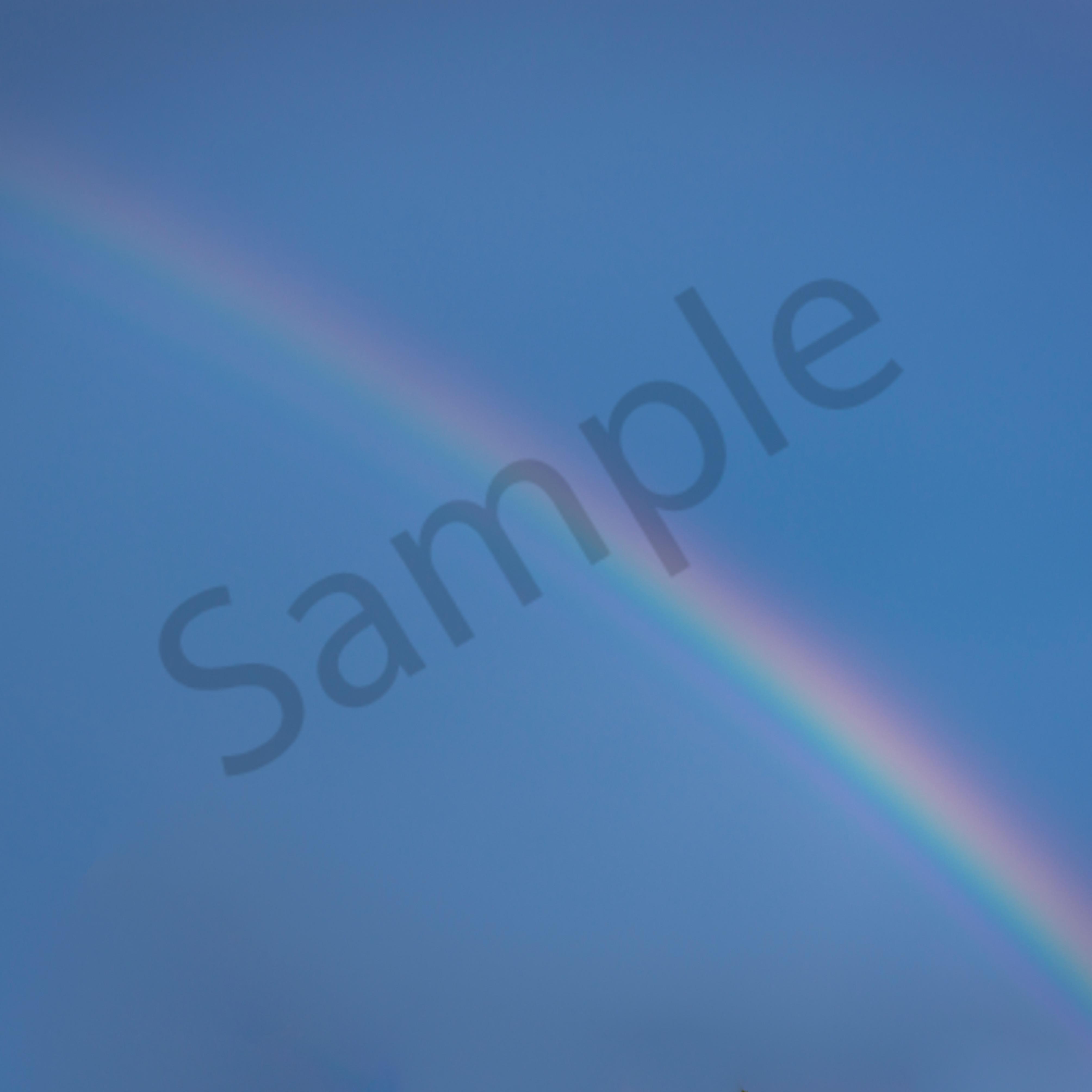 Rainbow wonders dnme54