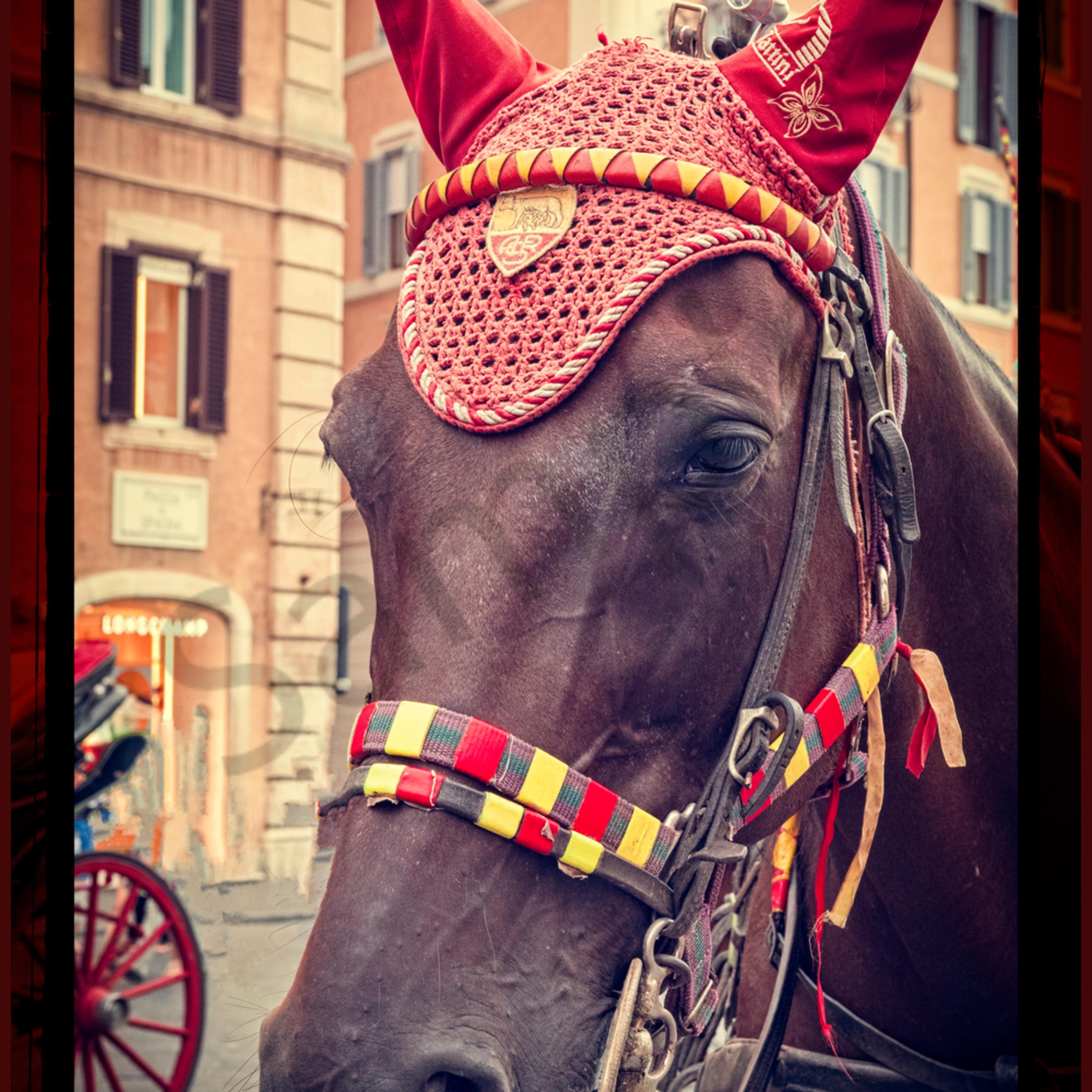 Roman horse ltbid6
