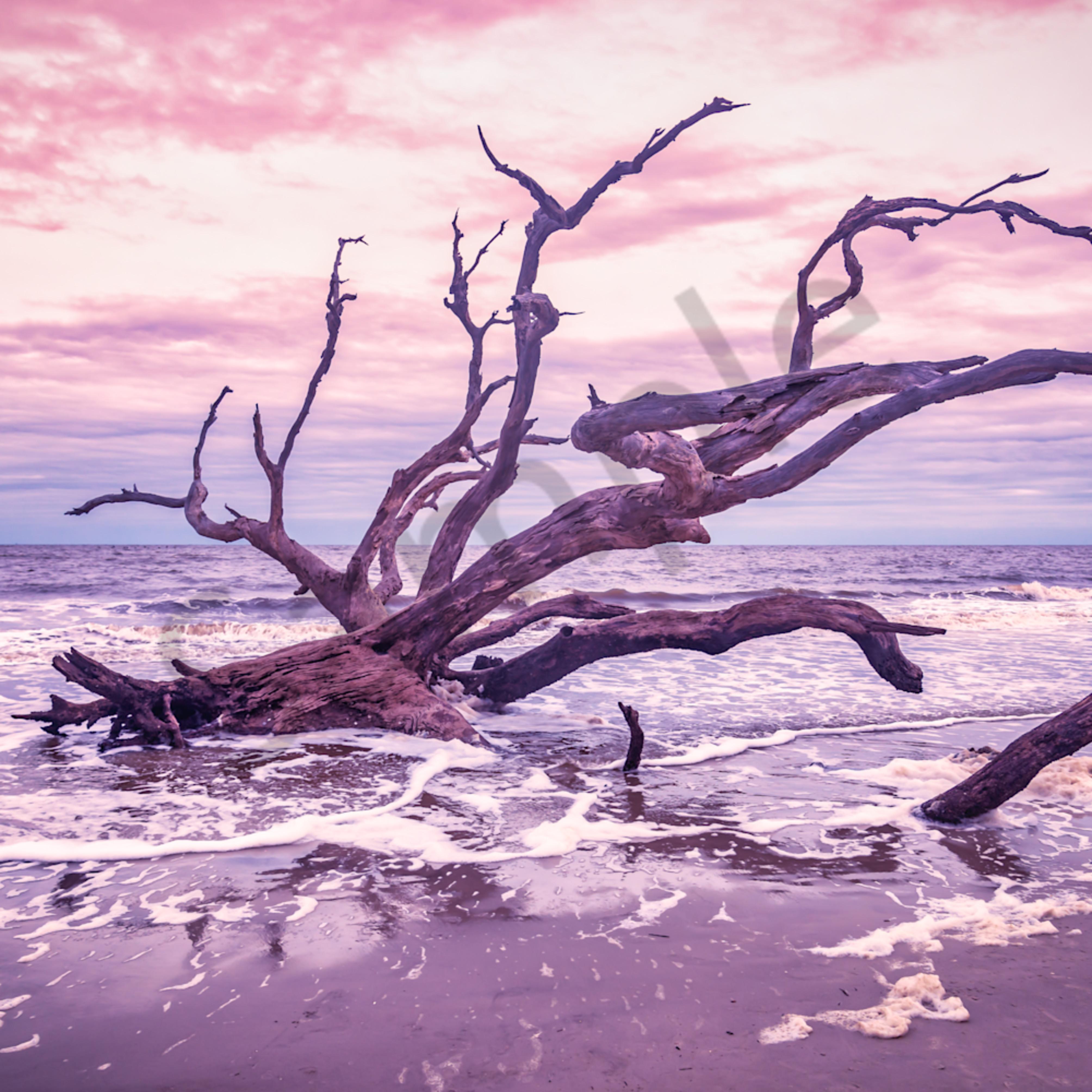 Jekyll island sunset ysezsb