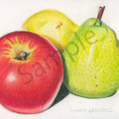 An apple and a pair of pears xcocuo