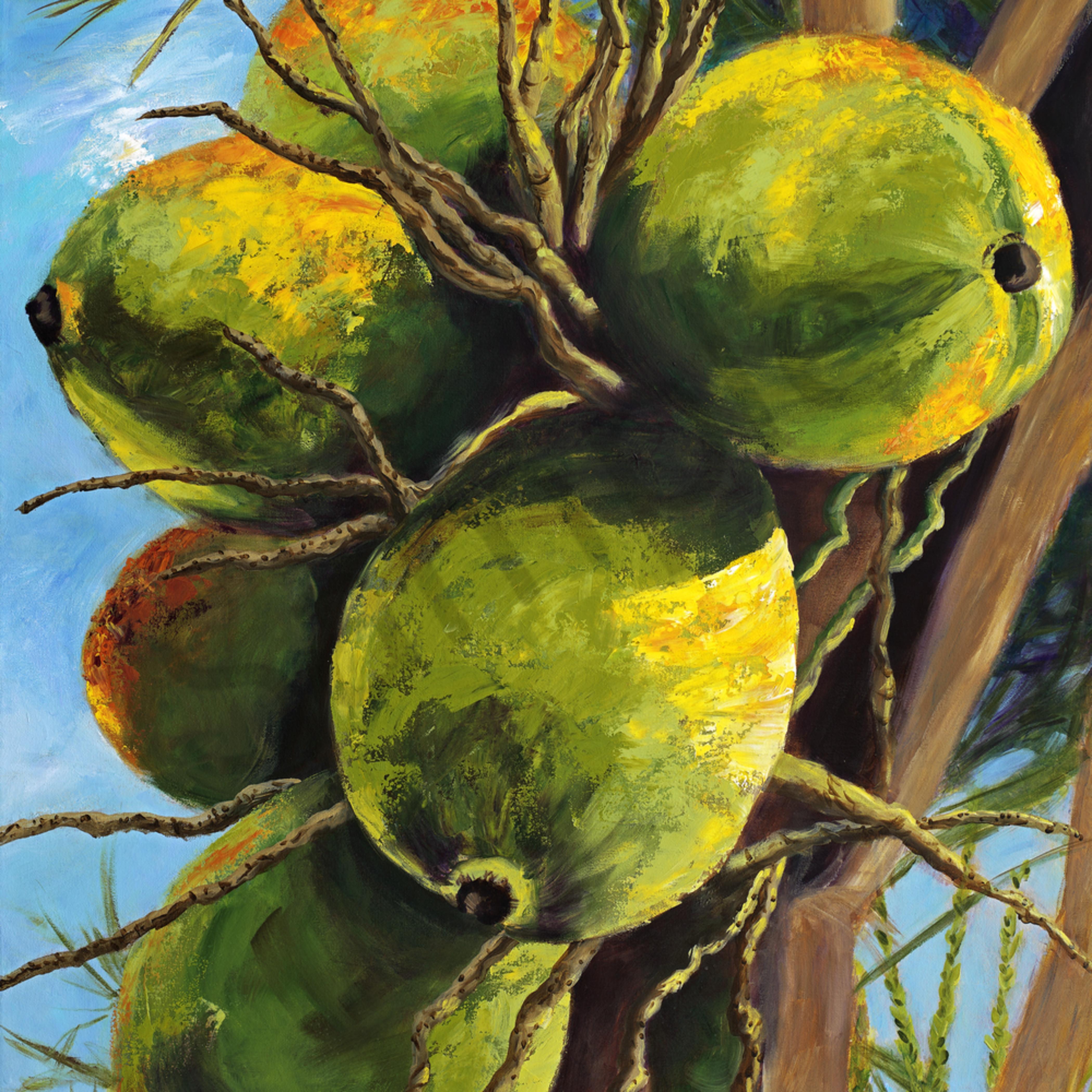 10 coconuts 30x52 crop d flat 87m vfjzmr