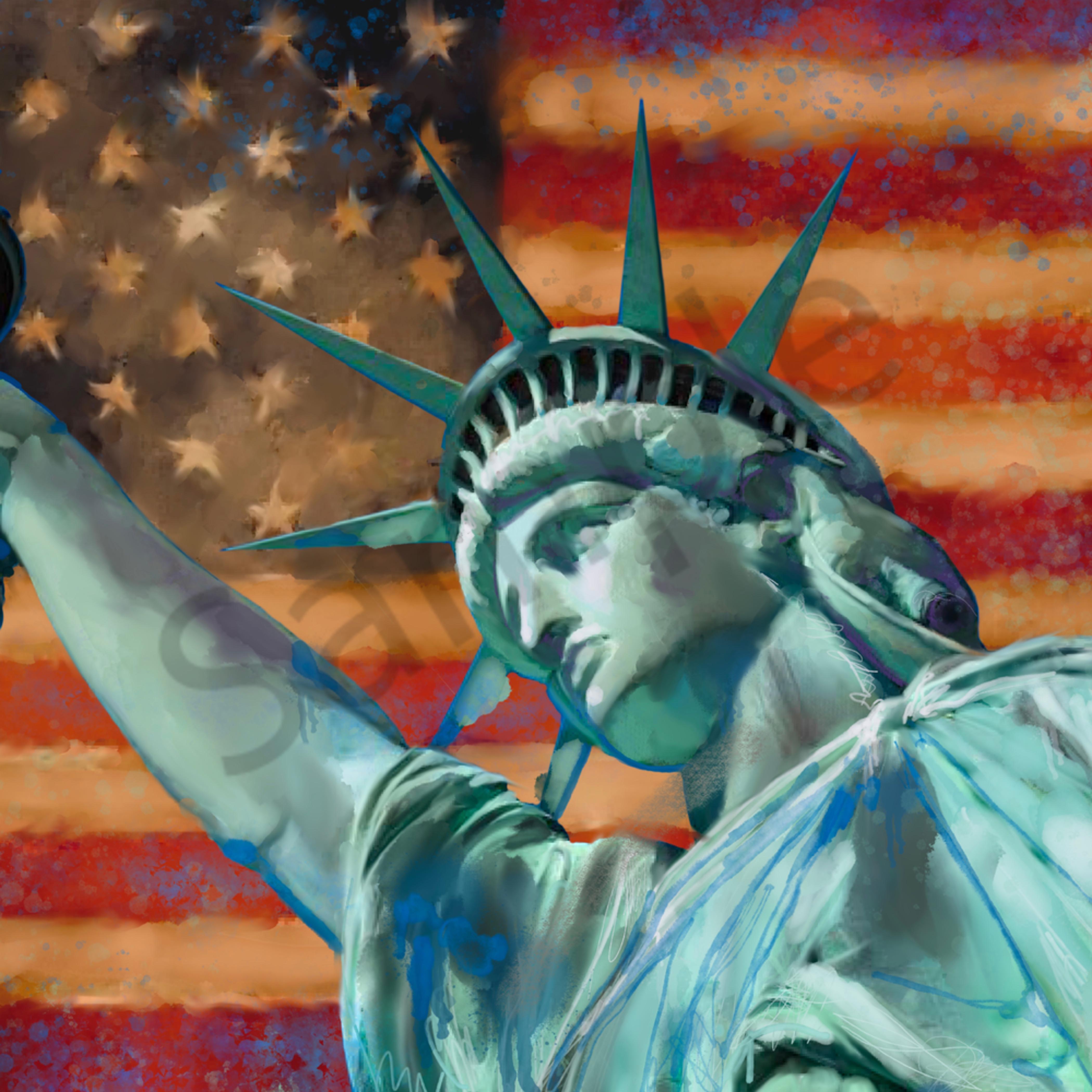Usa freedom 22x14 fcwwvv