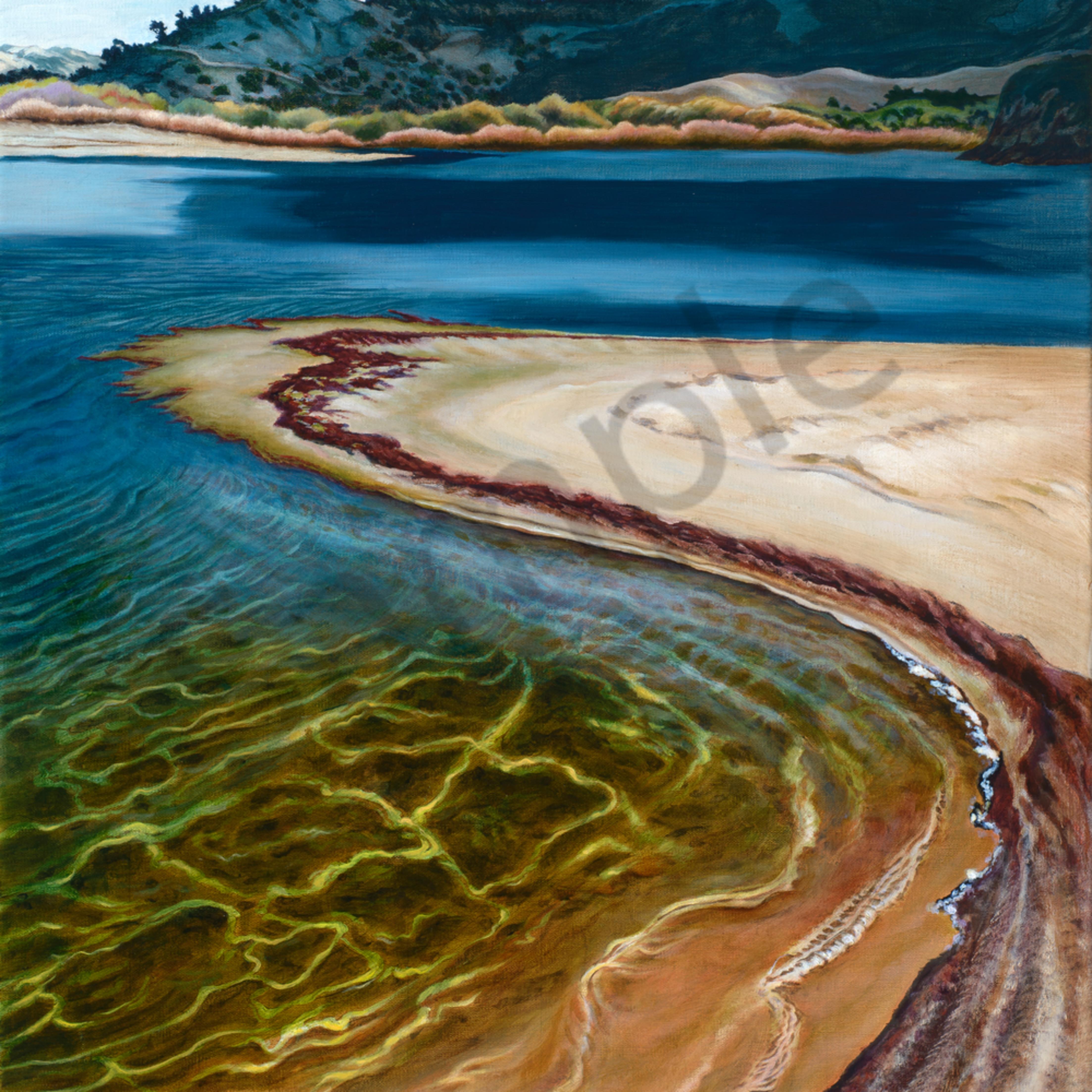 Carmel river lagoon shore e1du4s