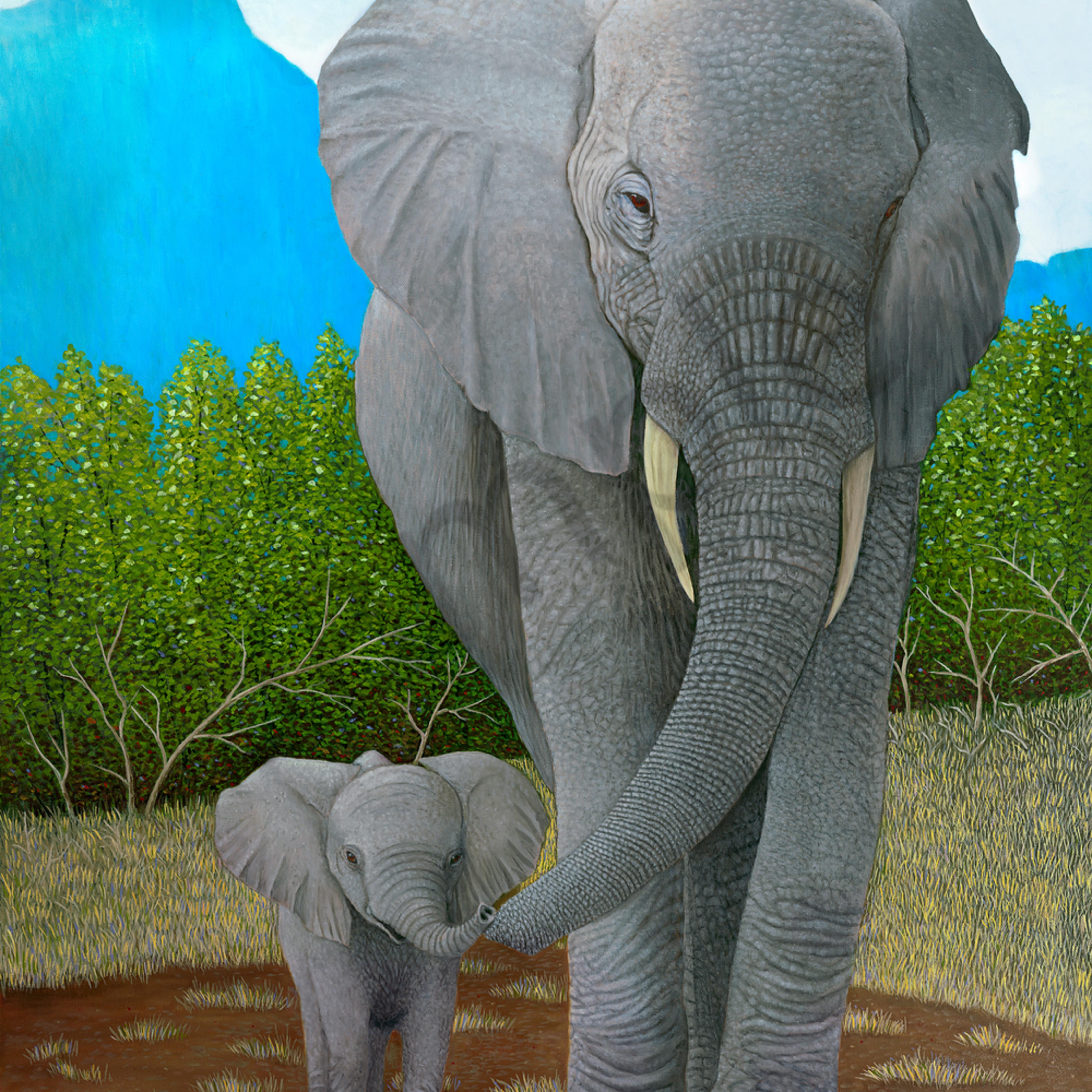 Elephants asf i61yjh