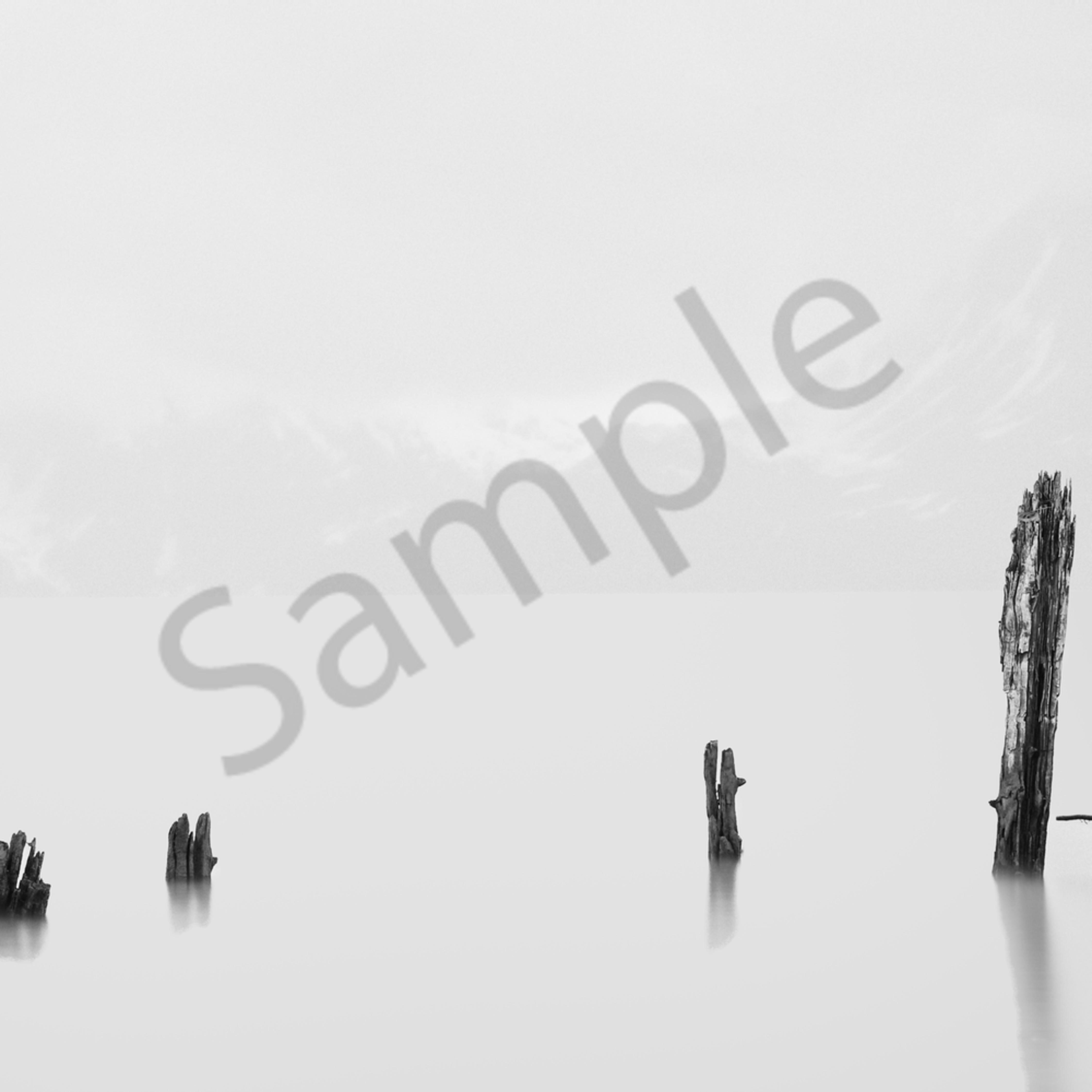 Valdez morning hpwg0z