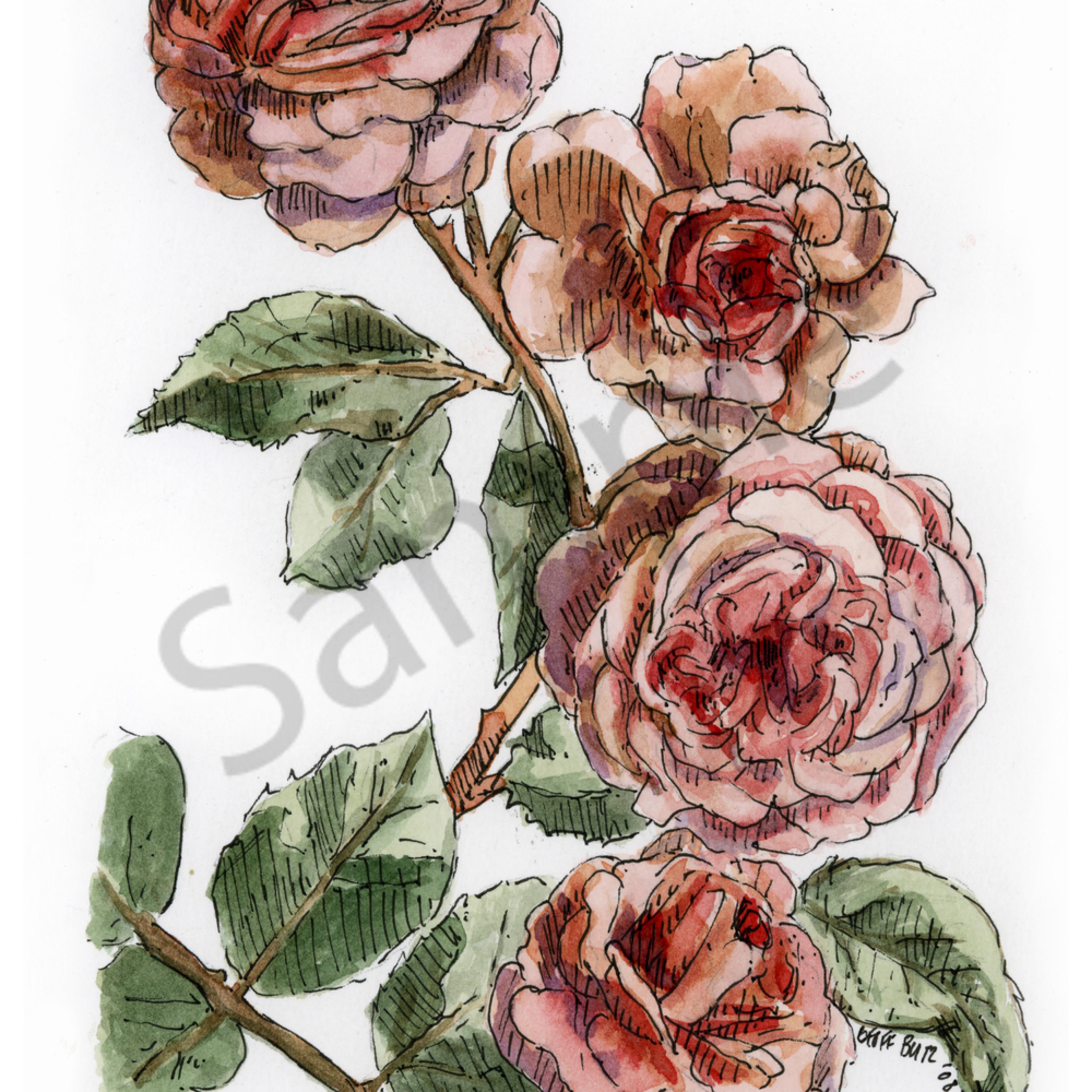 June   rose htt3e1