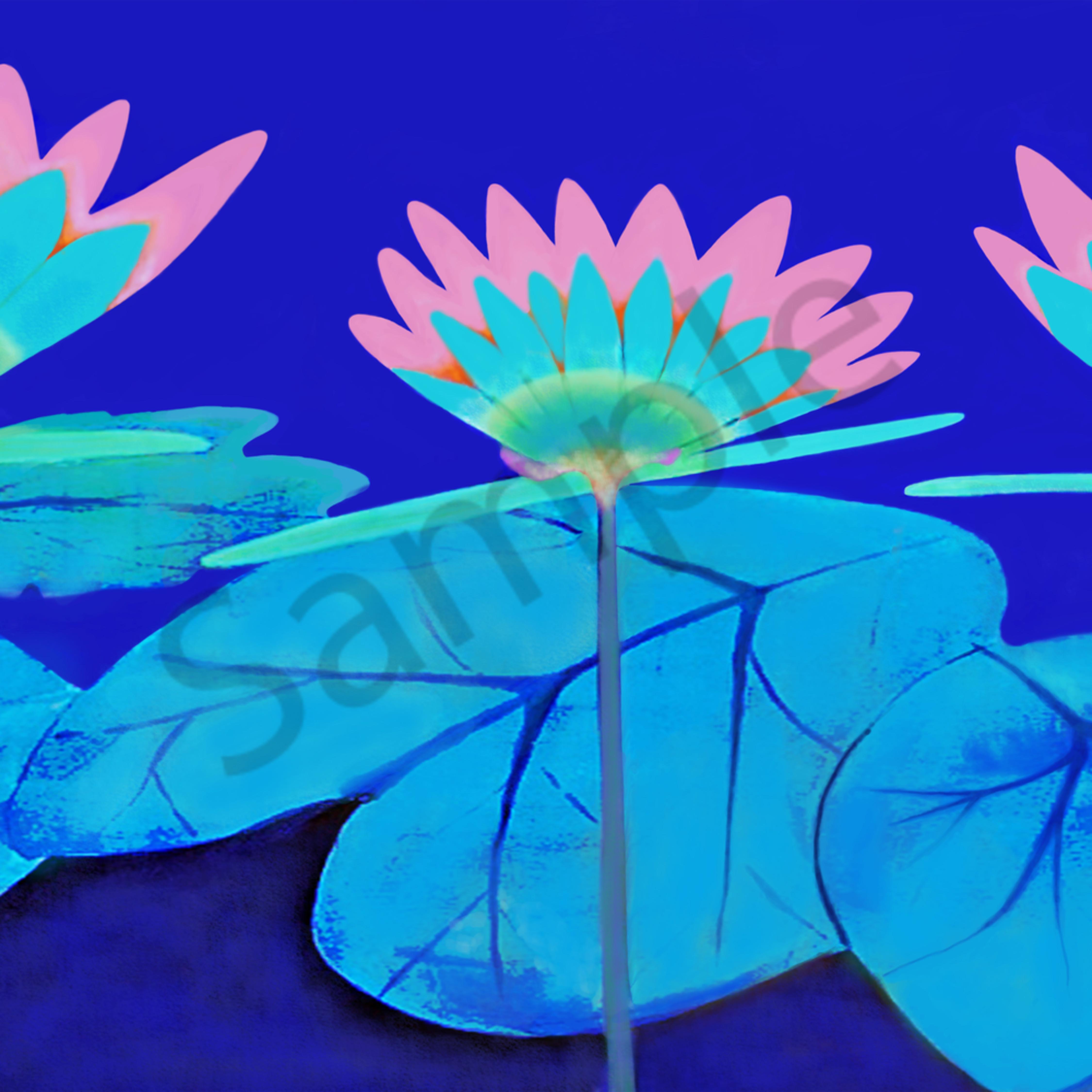 Pink water lilies ony3al