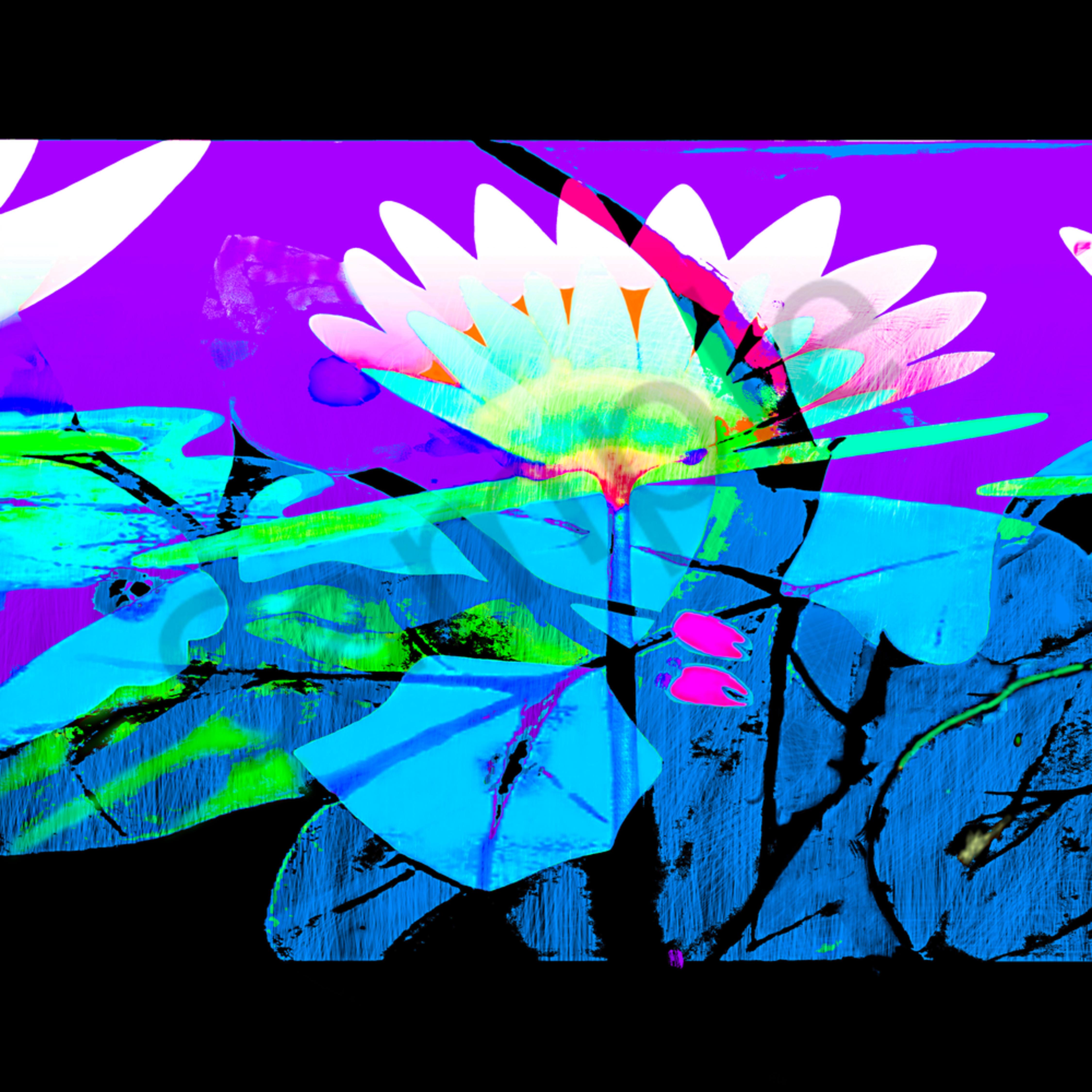 The lillie garden 4 hkzb6w