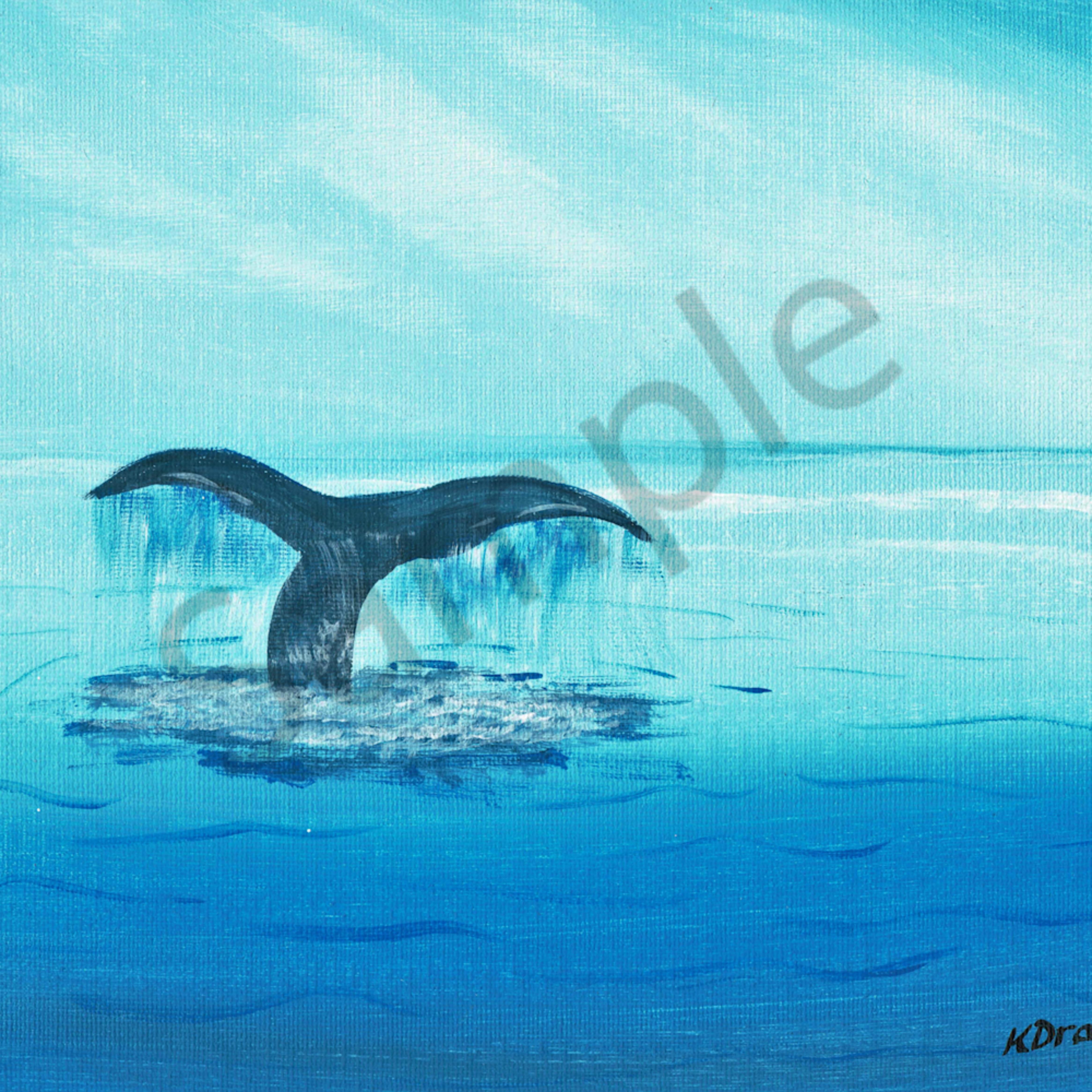 Whaletail i9uwbl