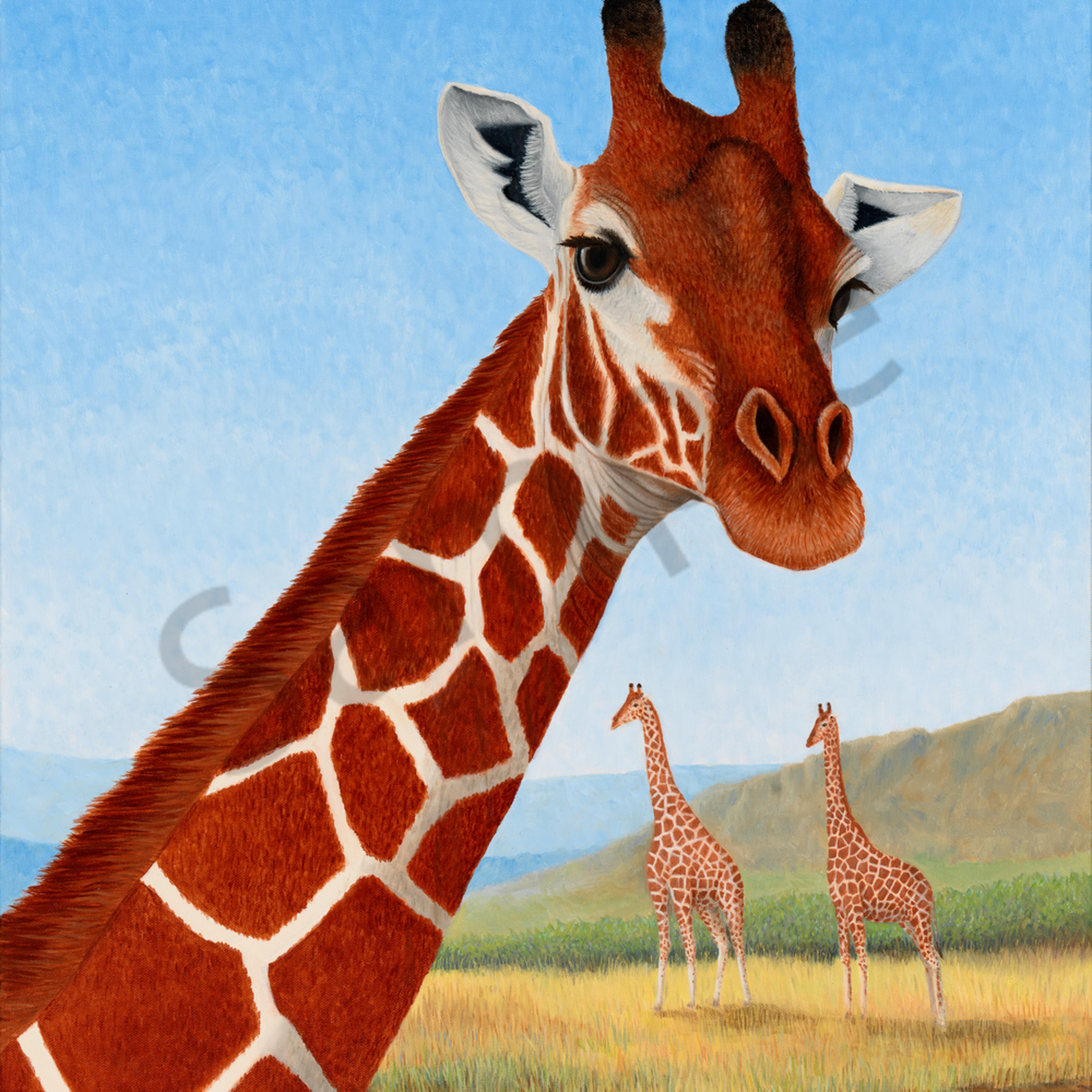 Giraffe asf mvcjnw