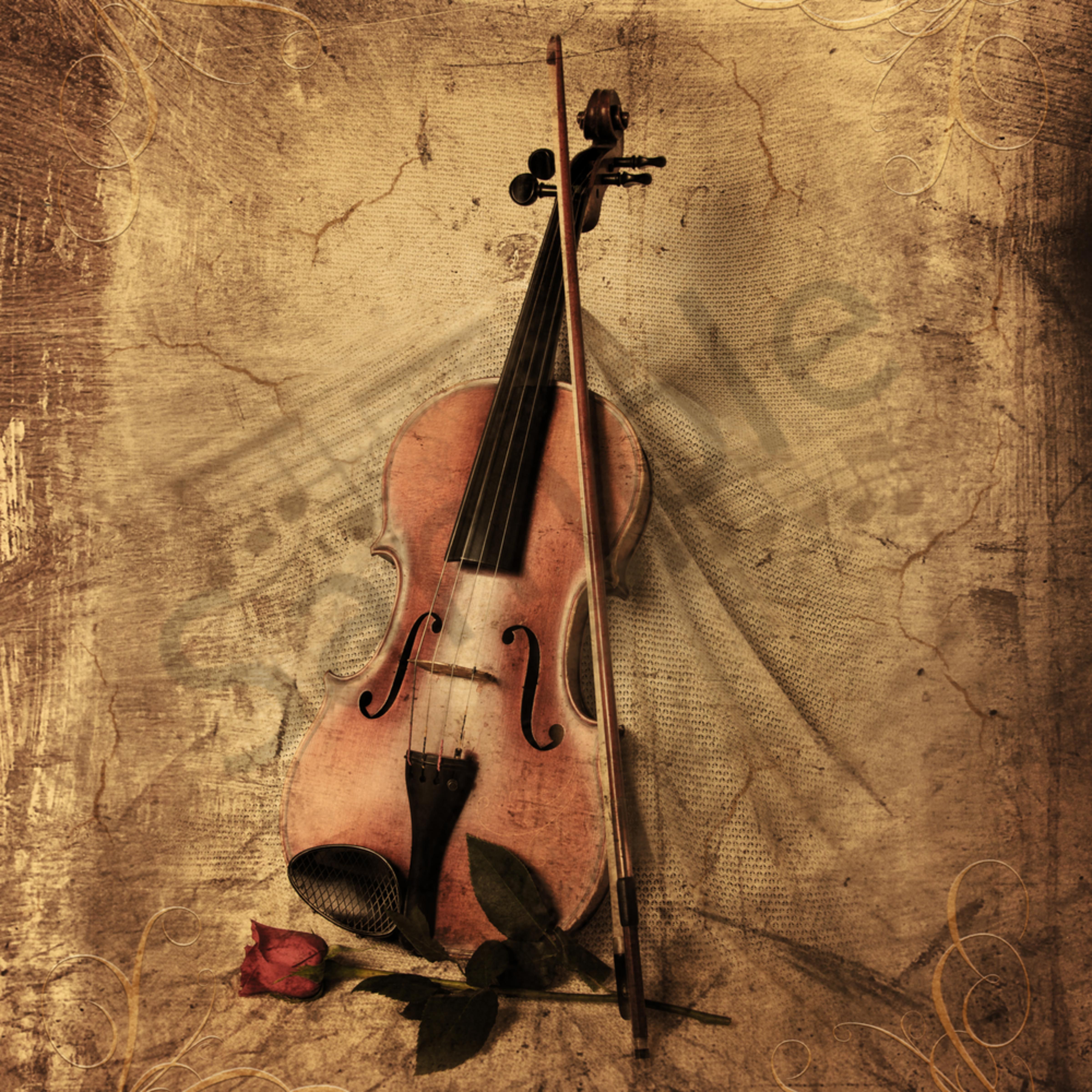Violinart final f3j779