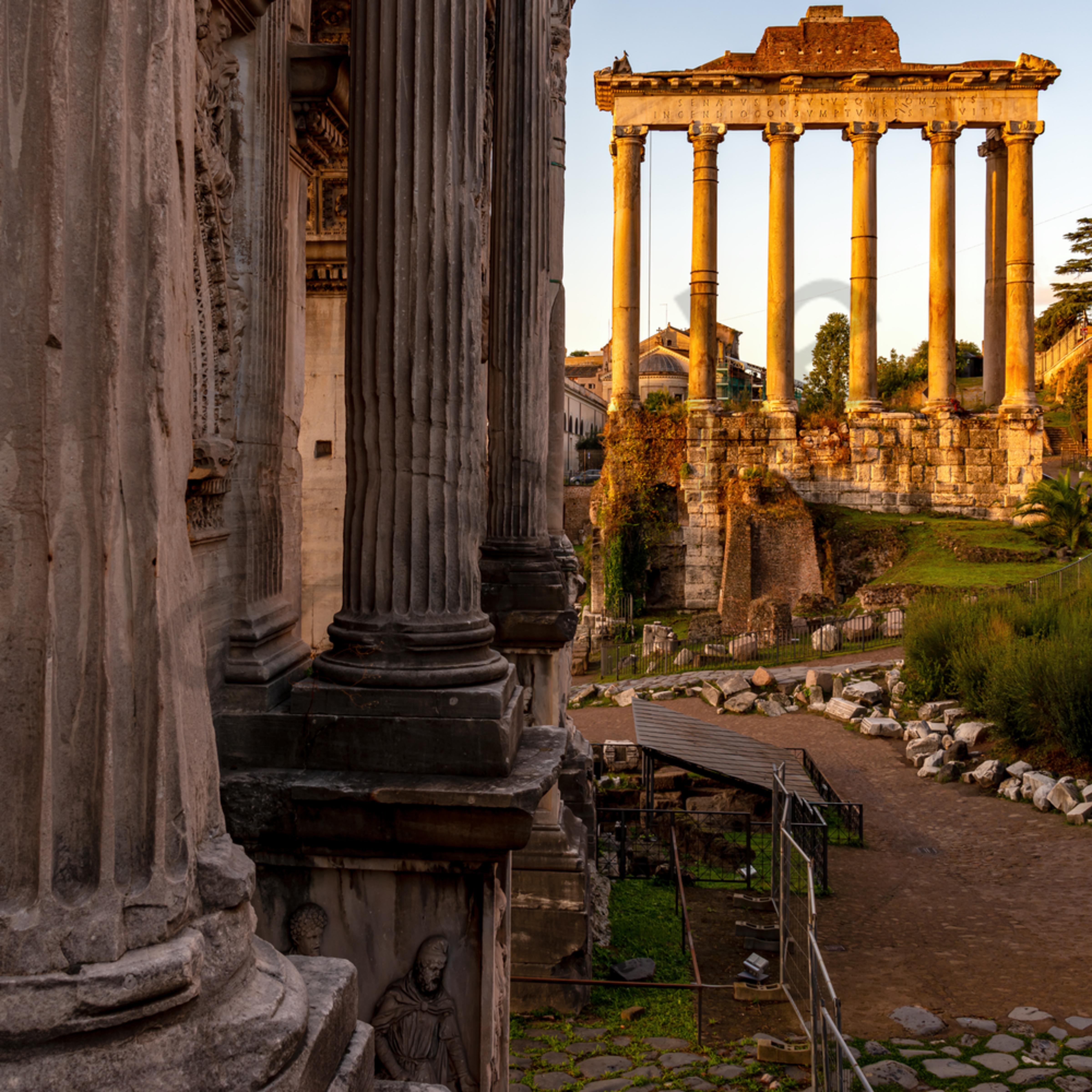 The roman forum rome italy erkzzm