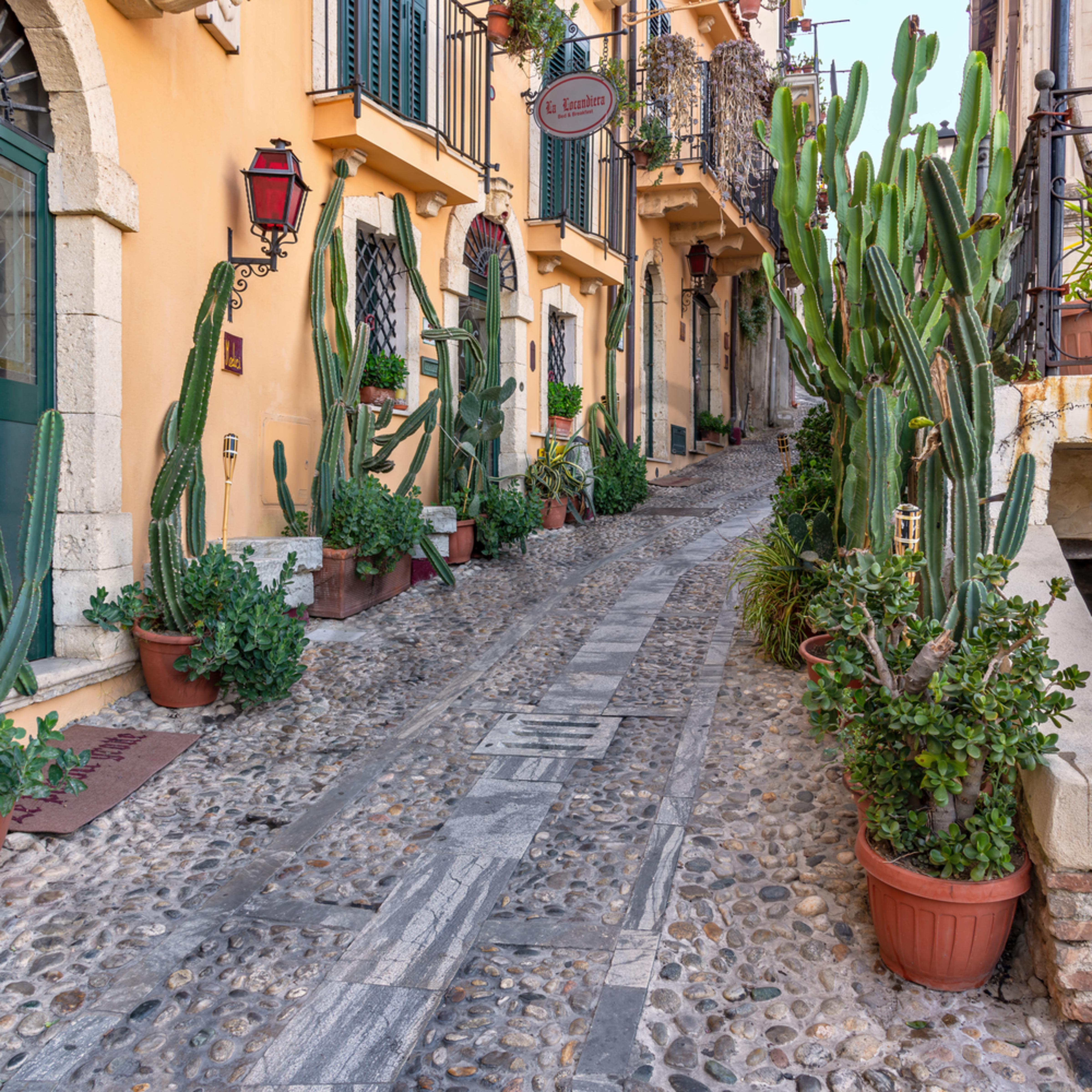 Alleyway in scilla calabria sicily italy lpdbmr