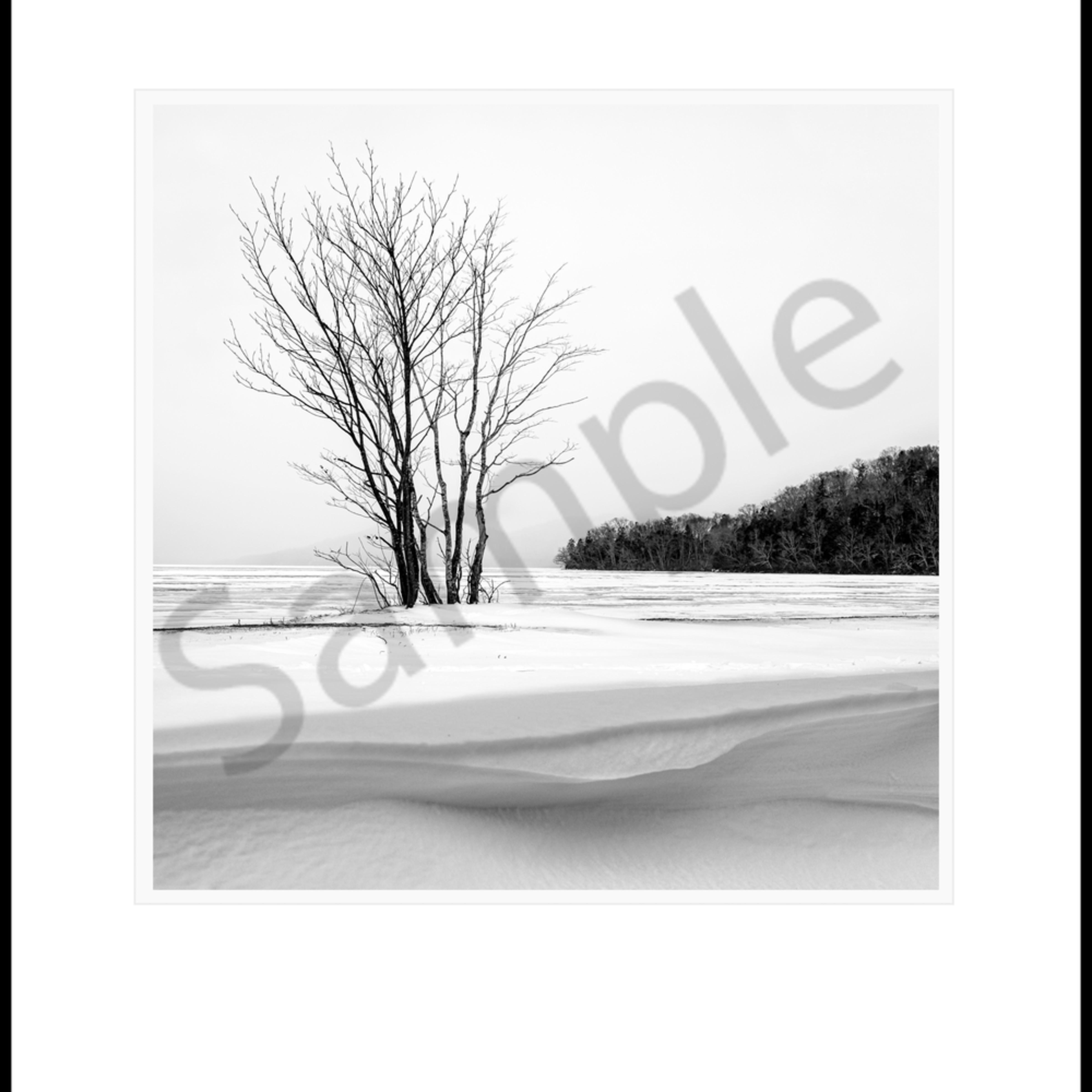 Snow drift lls8ax