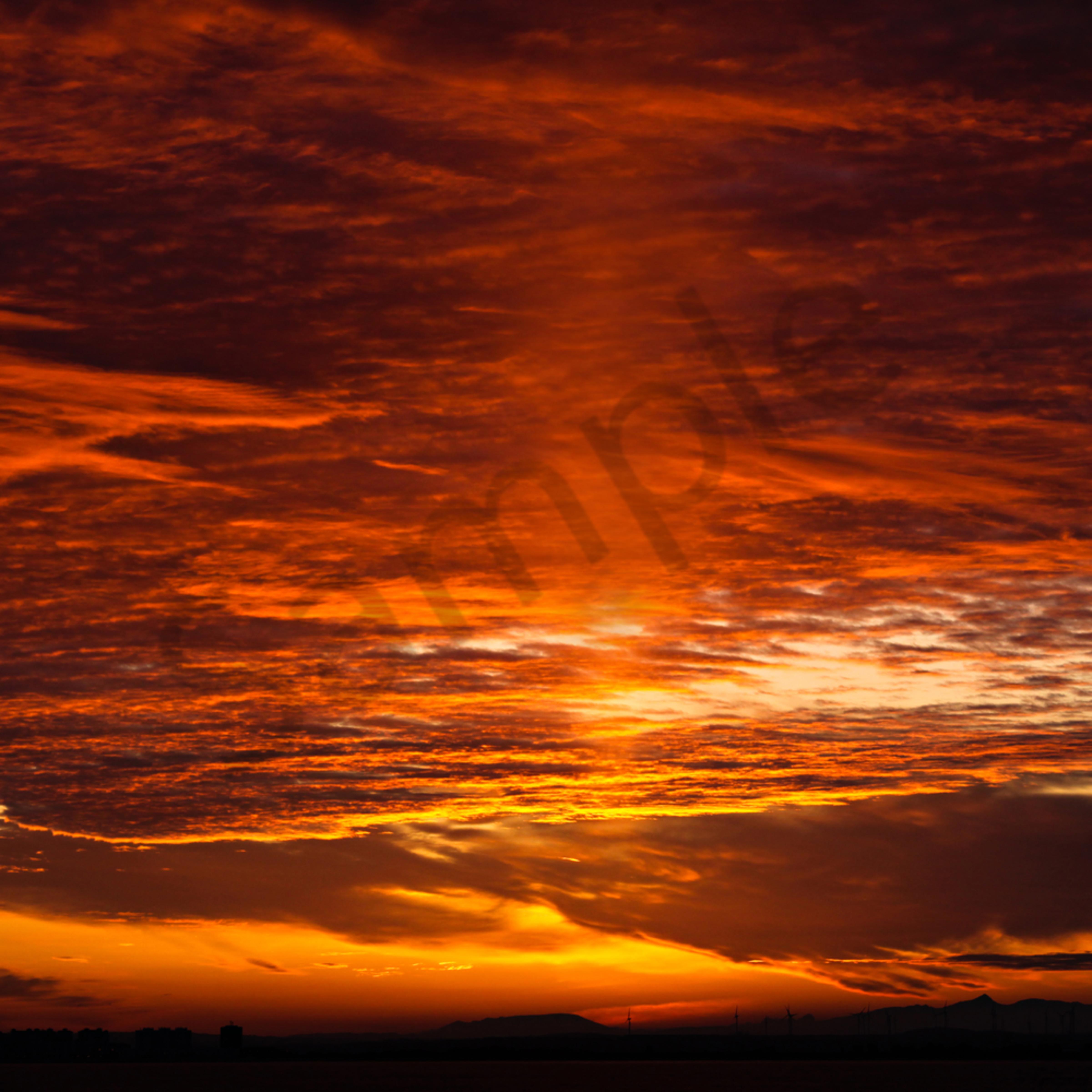 The skies proclaim by karen edmondson icolio