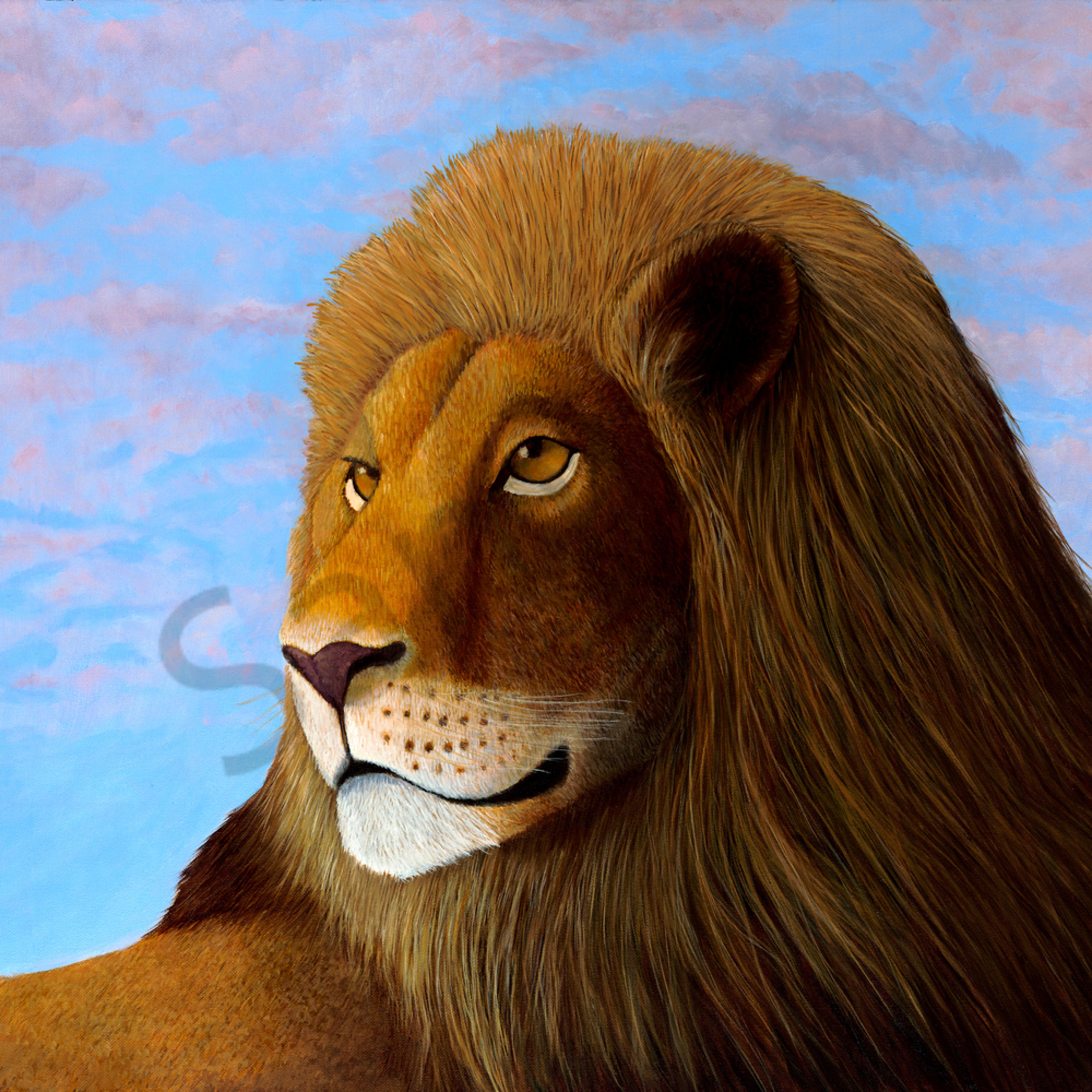 Lion asf yyv6db