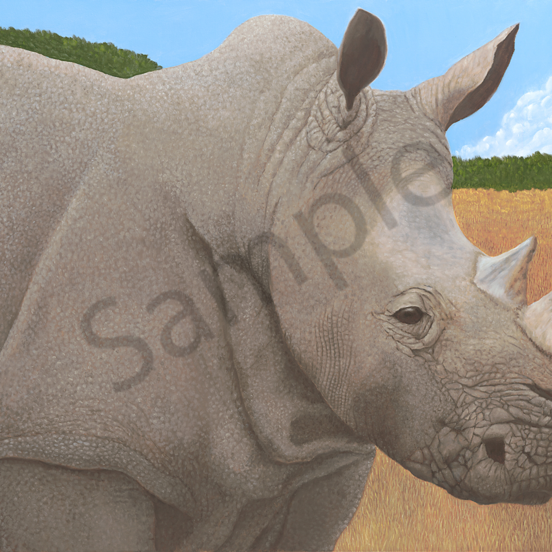 Rhino asf pb7vh3