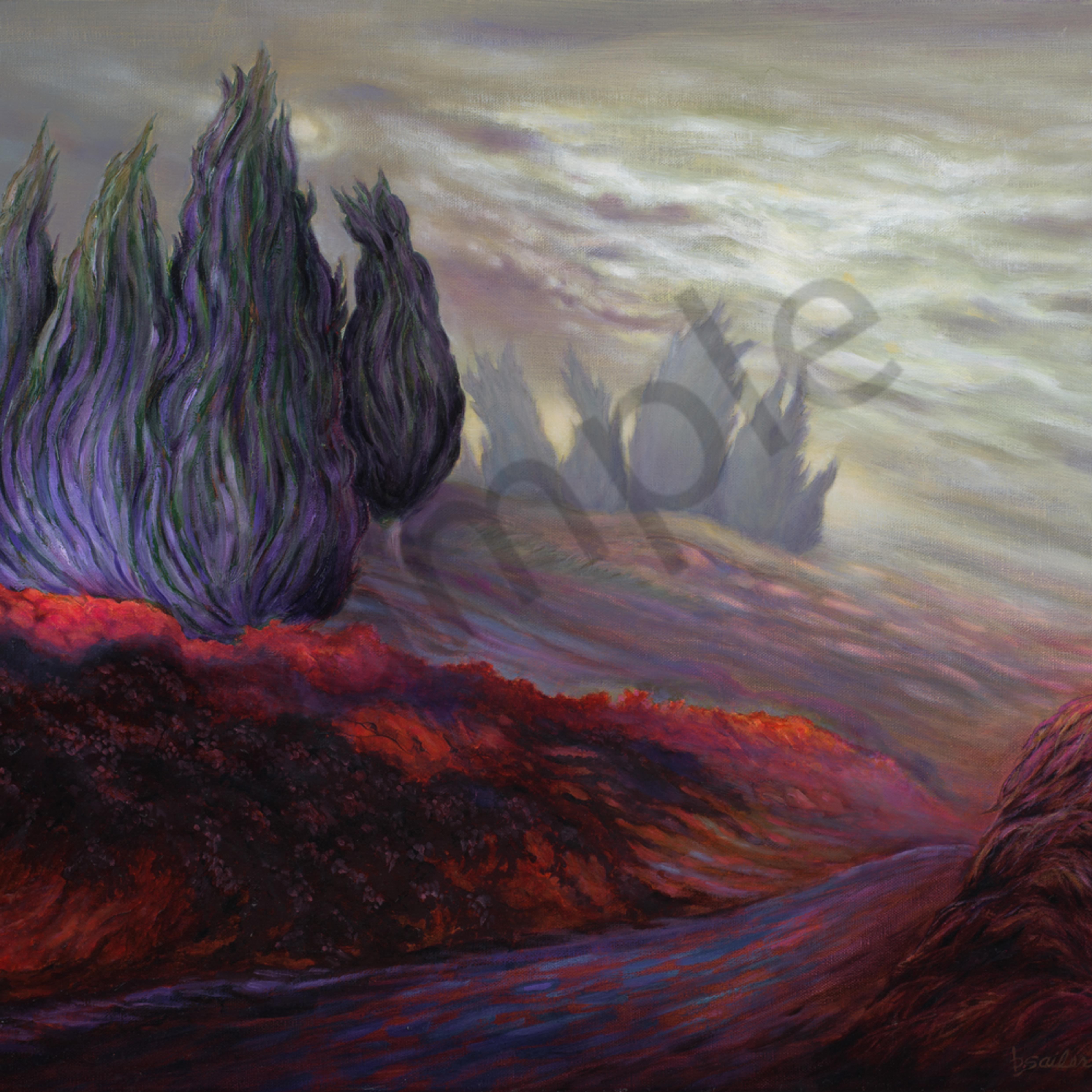 Cypress trail in the mist vcovlu