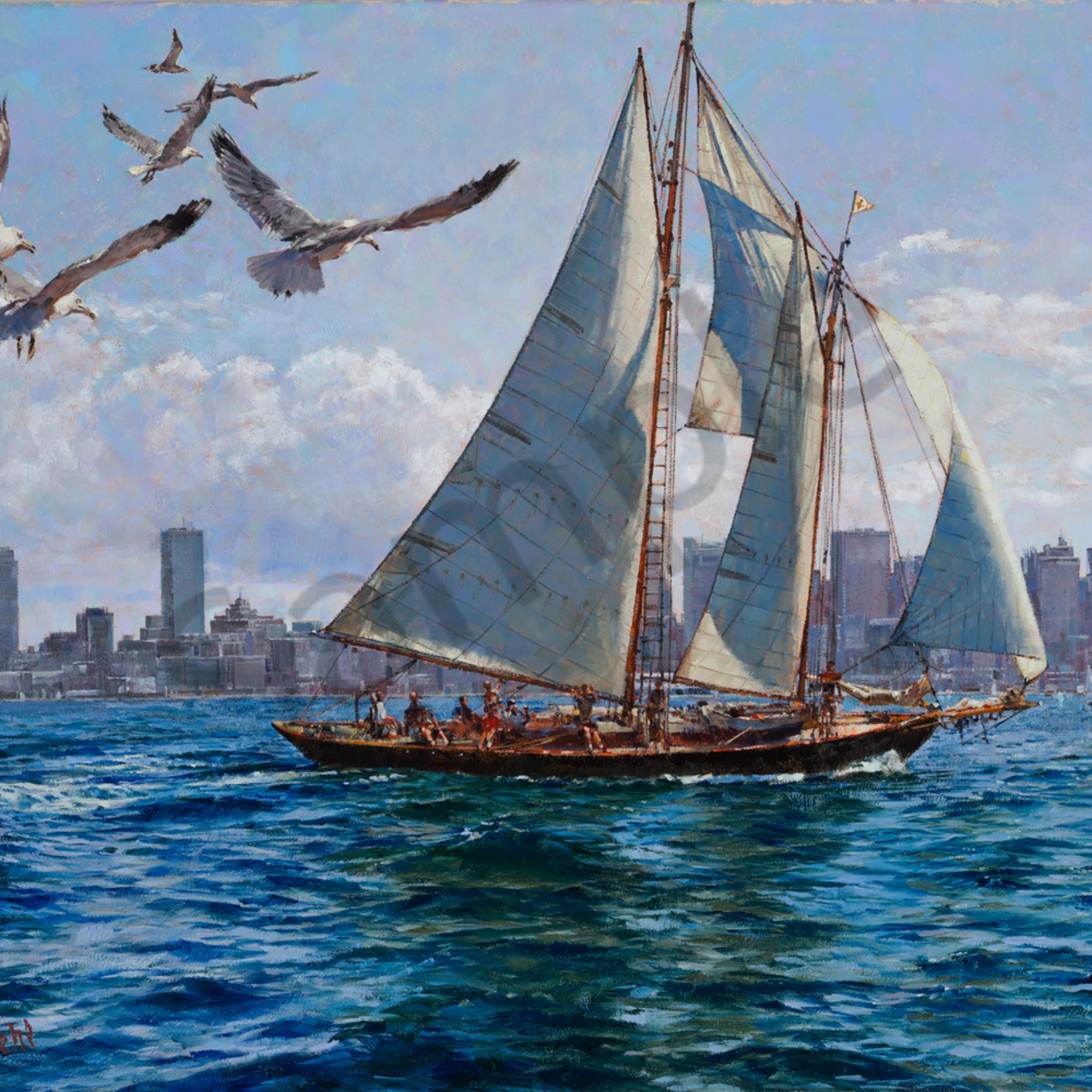Boston harbor jaunt copy cgxnrm