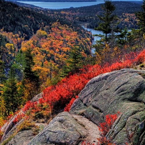 Acadia national park 3008 nid1wt
