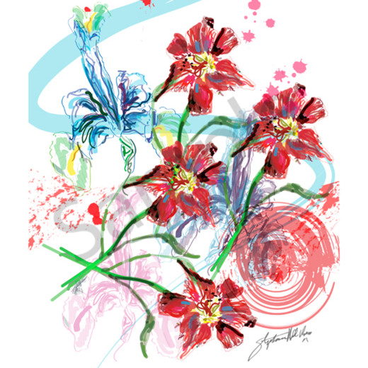 Samba of the lillies ctjstm