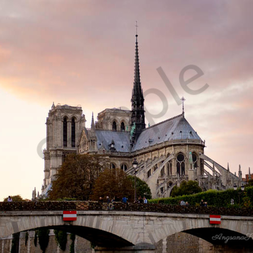 Sunset over notre dame cathedral with signature qirdll