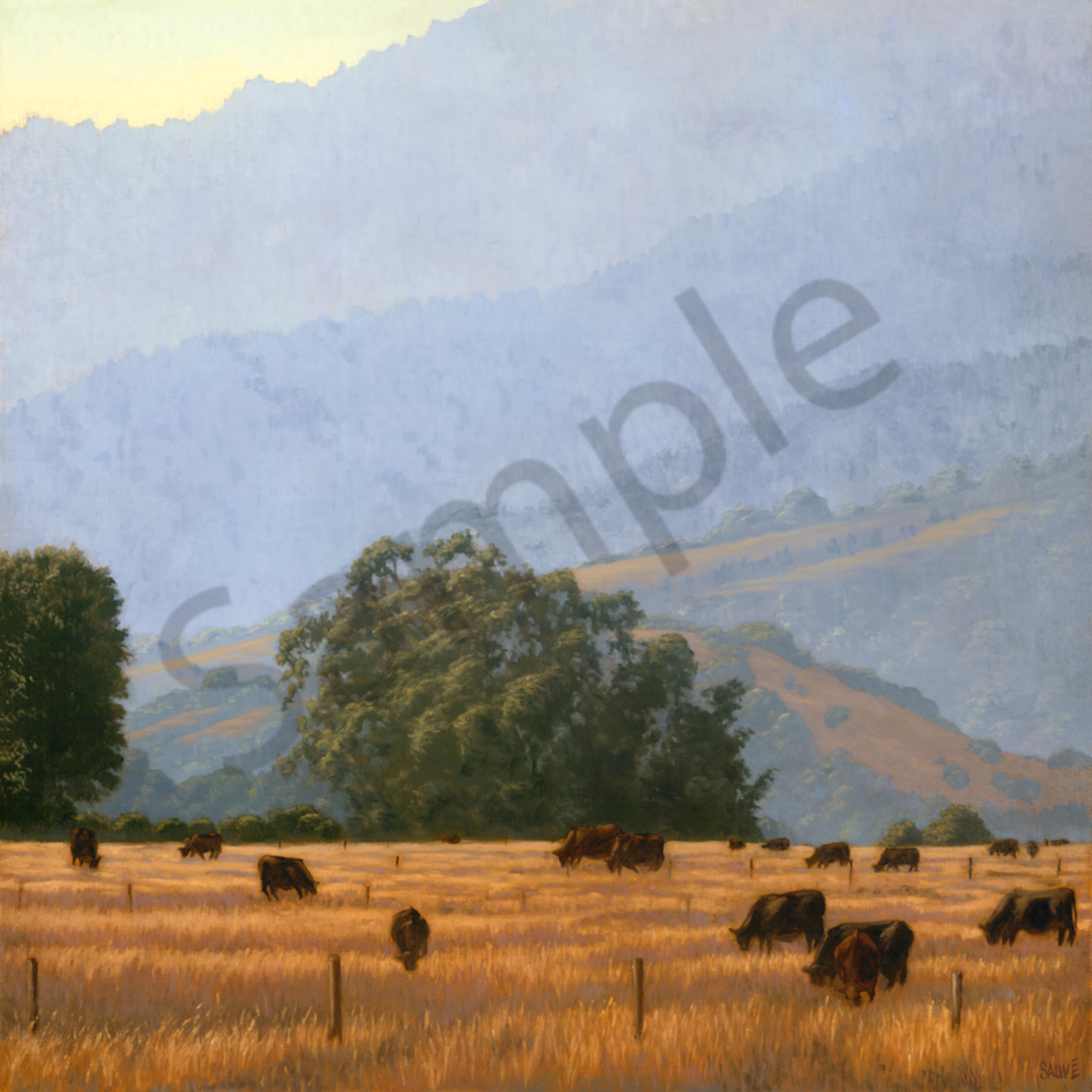 Evening graze on the mesa nsbcwt