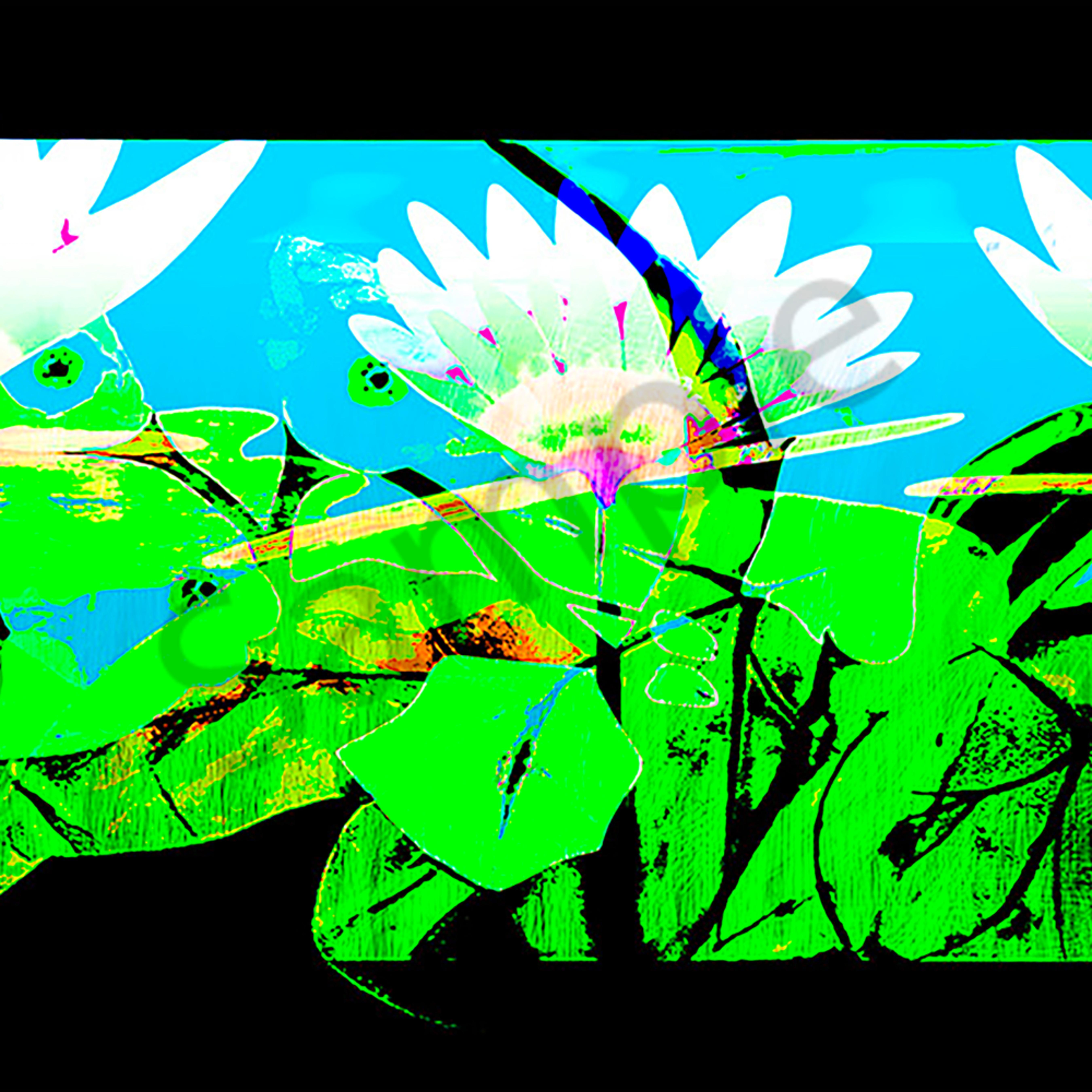 The lillie garden  4 fsm8aj