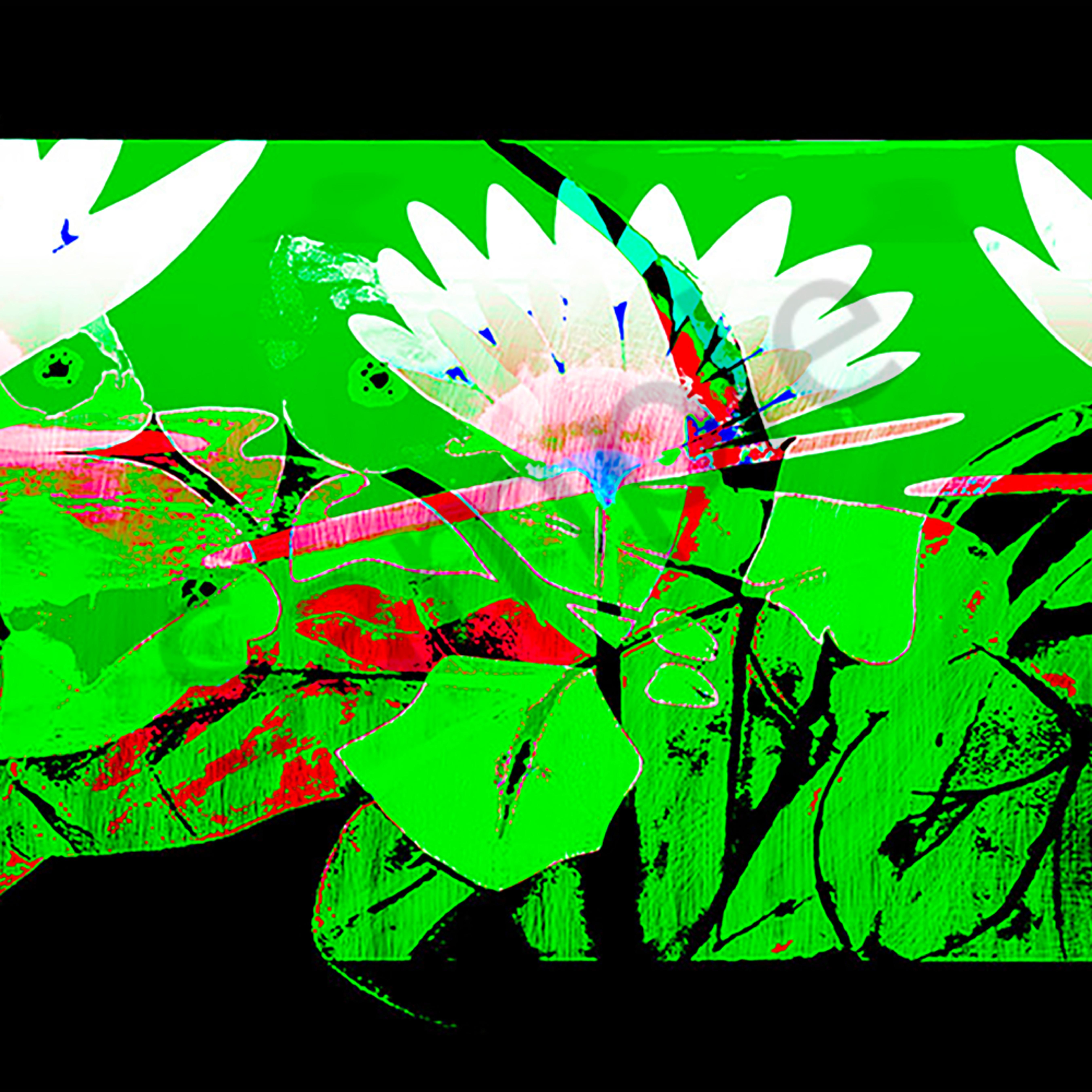 The lillie garden garden 1 eswvqt