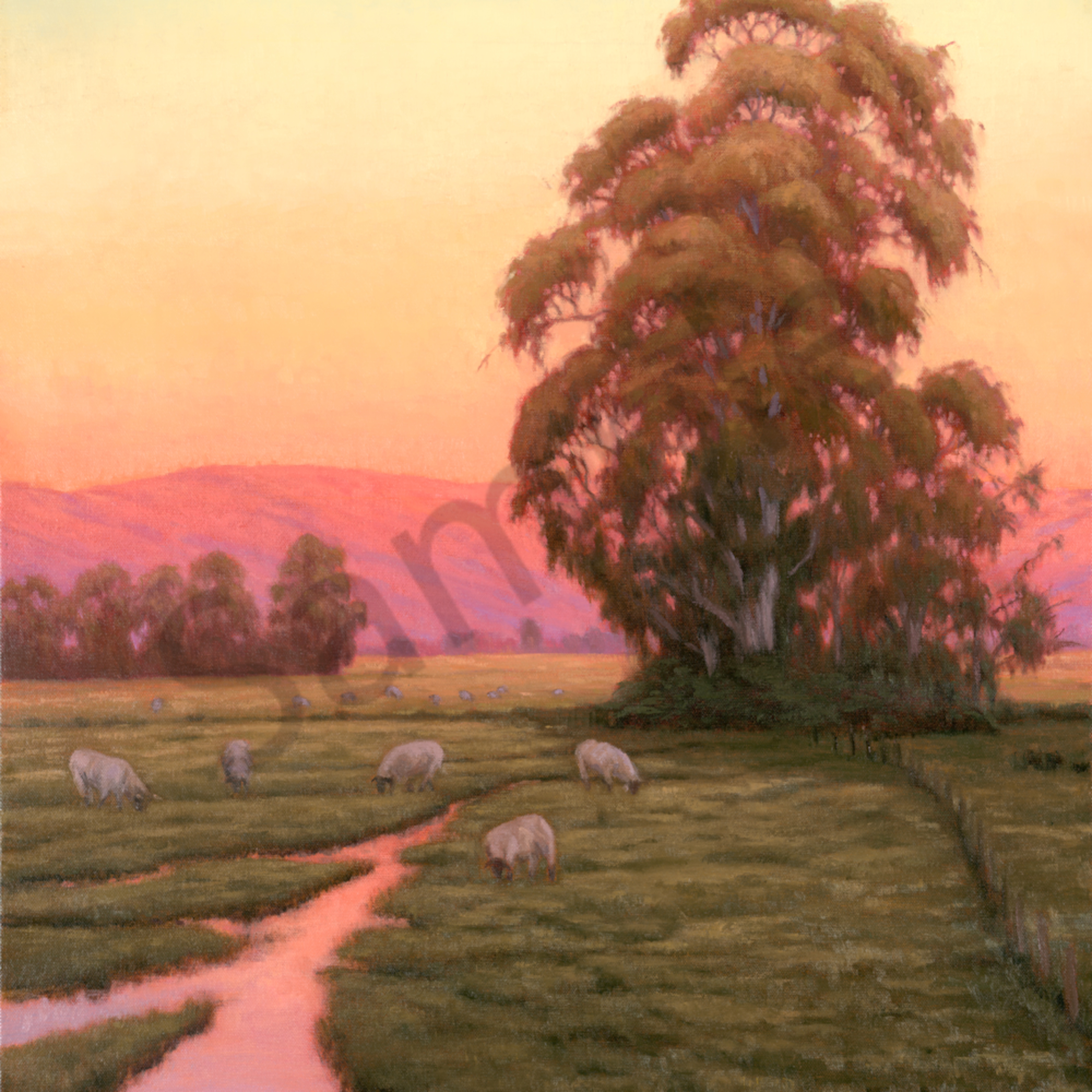 Sheep at dawn lqwnix