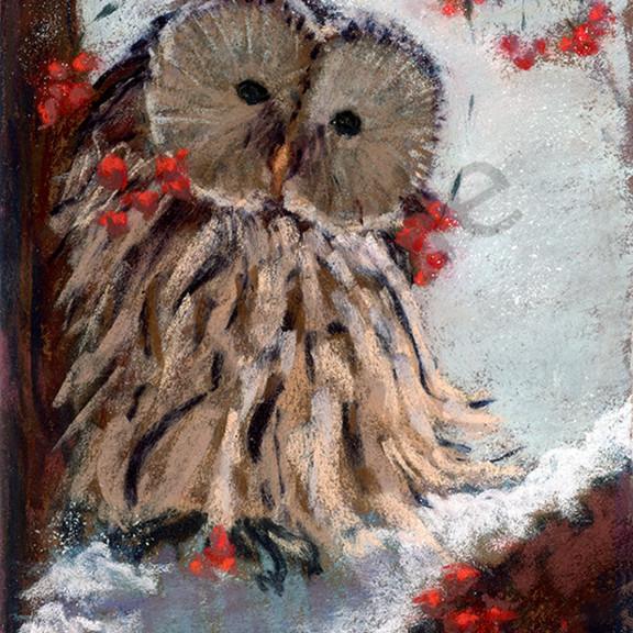 Snowy day owl bvu3eu