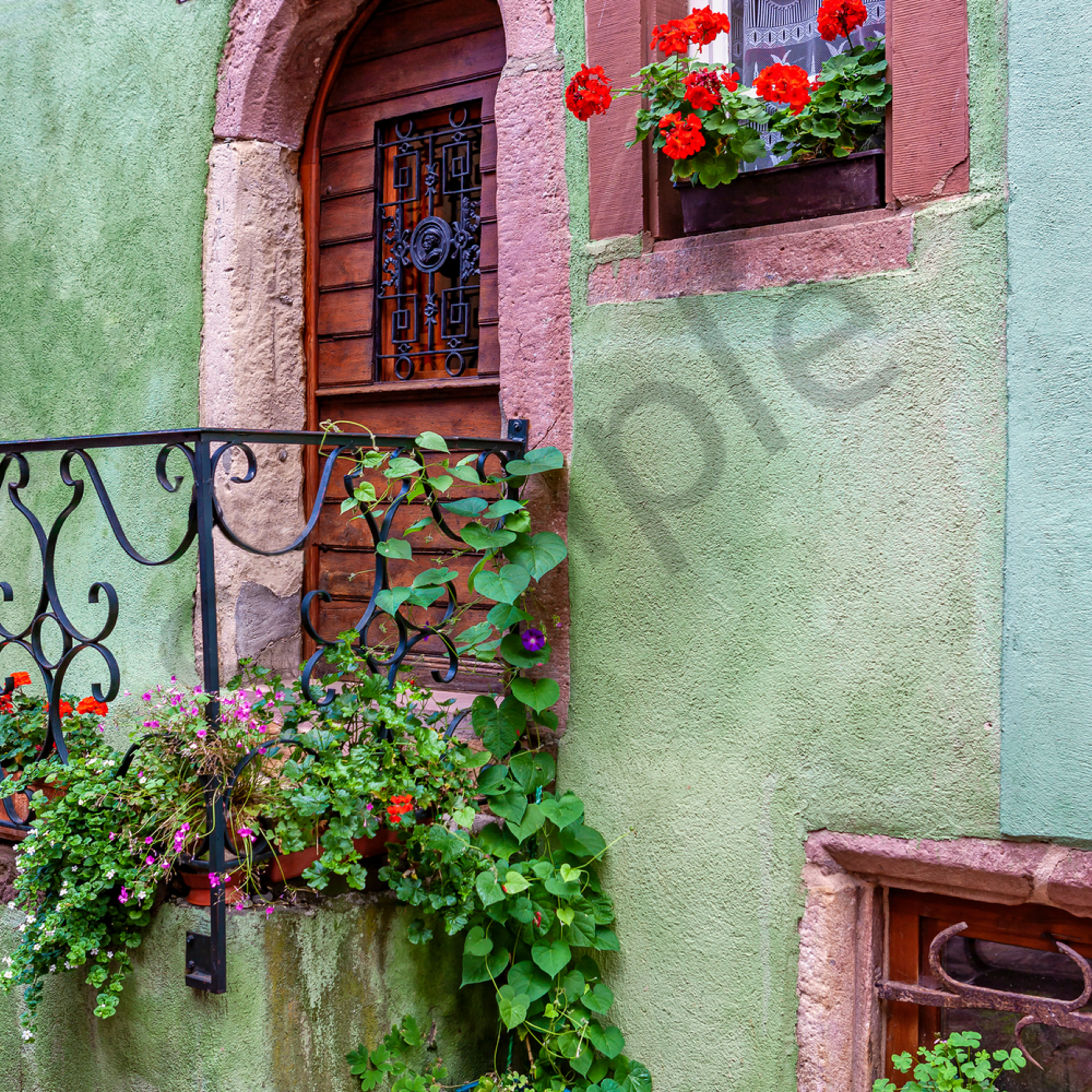Pink door with flowers riquewhir france lrxai3