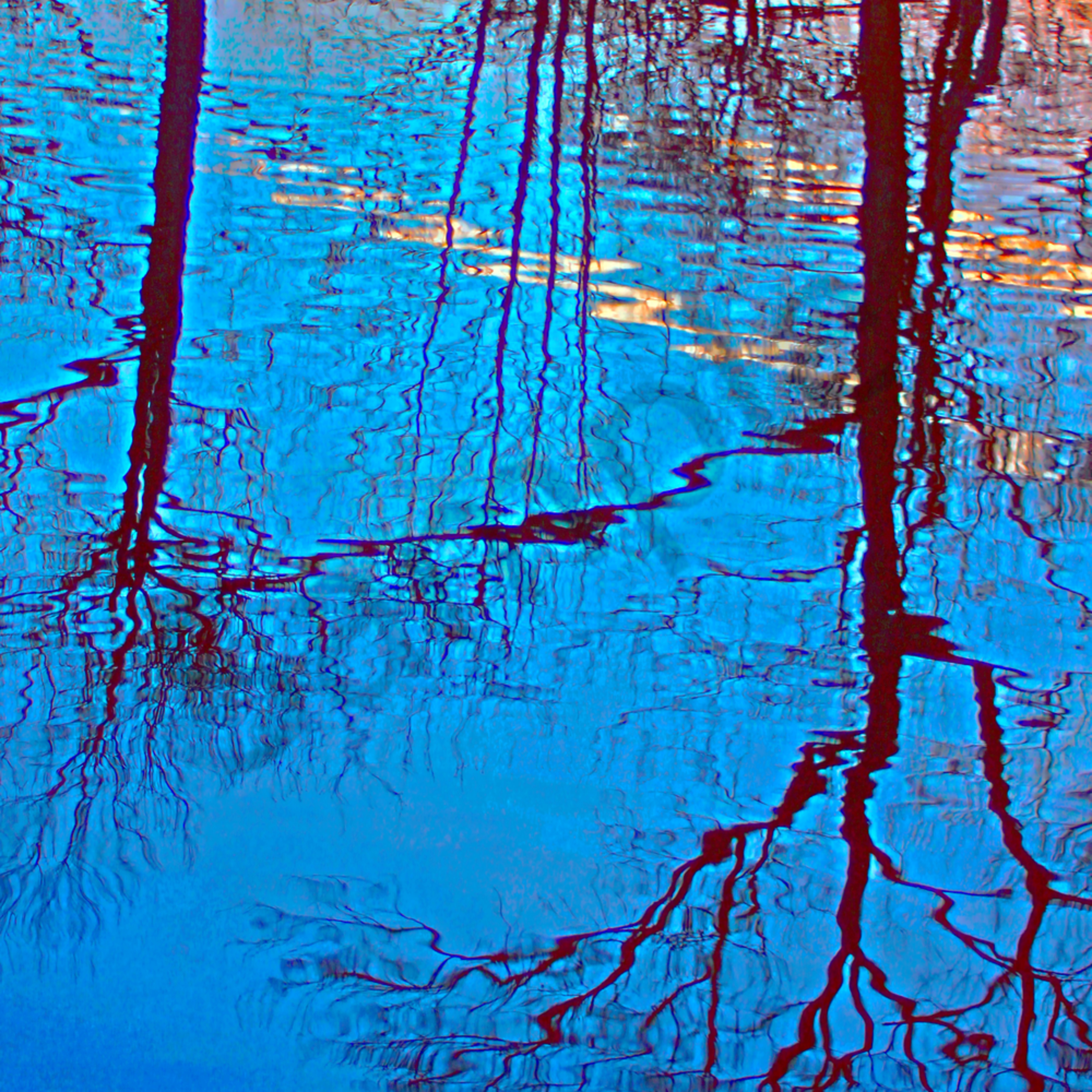 Spring reflection website snqosi