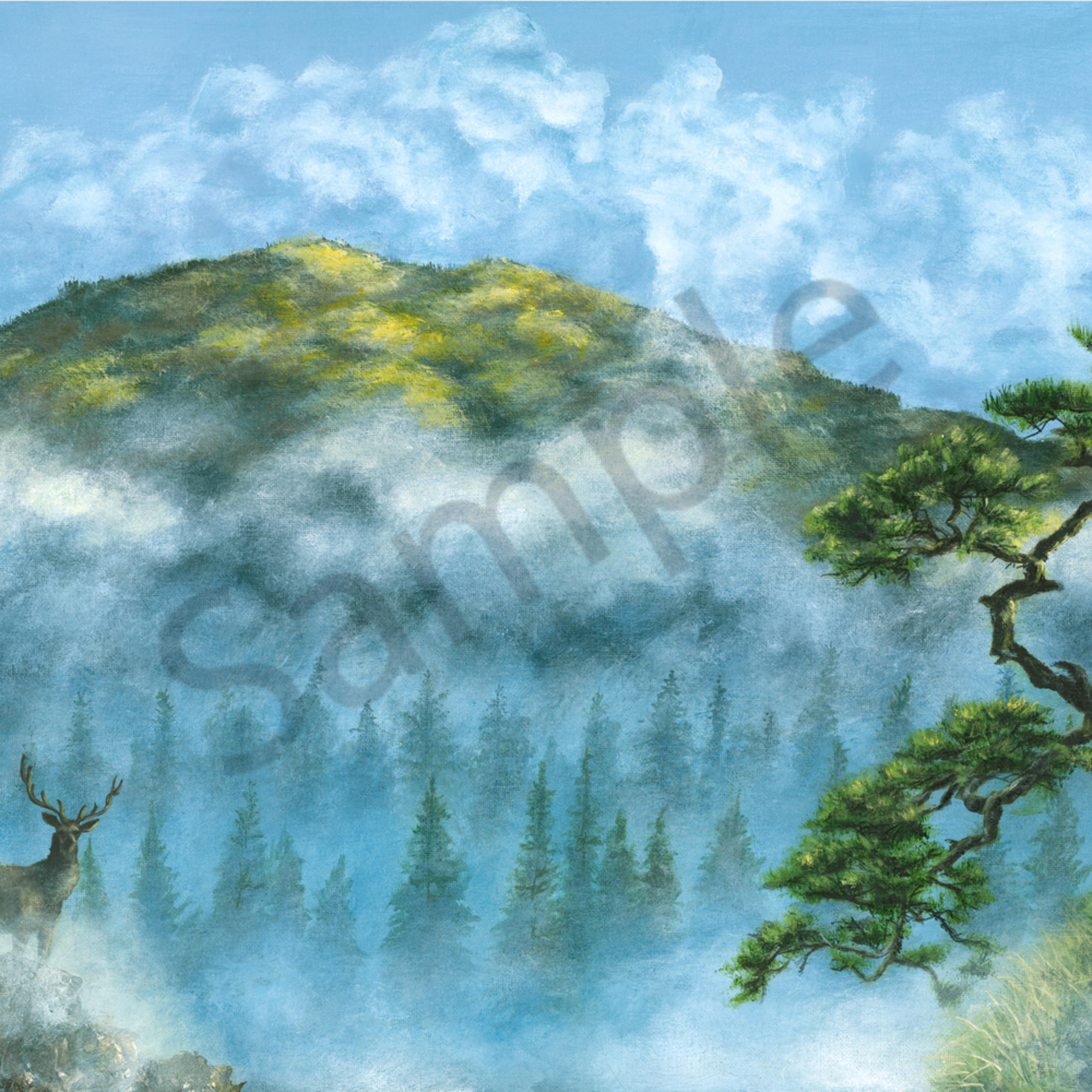 Misty hills ylbhuz