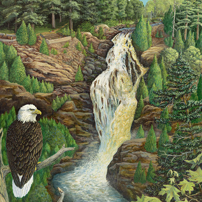 Eagle eyes falls xbpx34