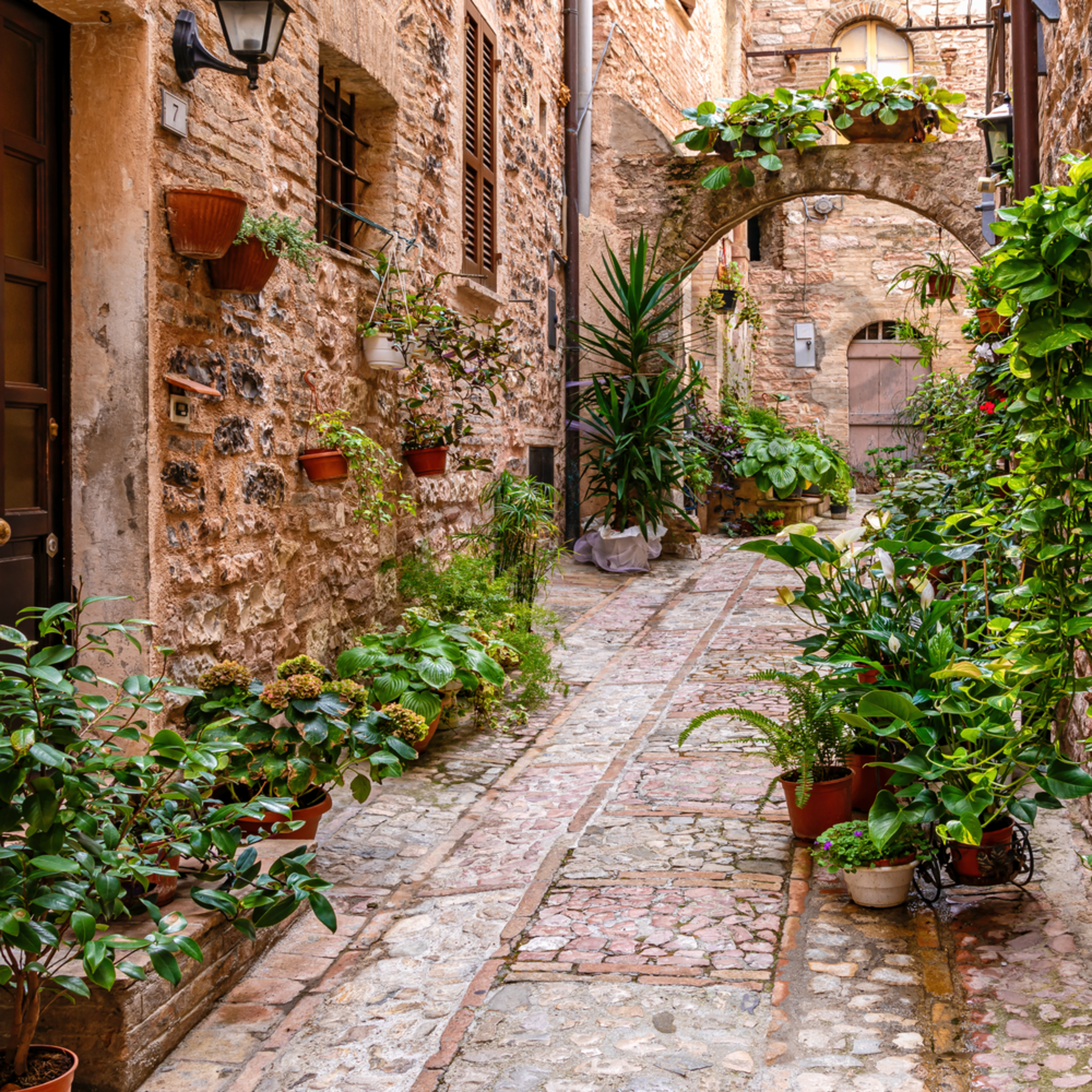 Spello and flowers in alleyway italy ngi5pr