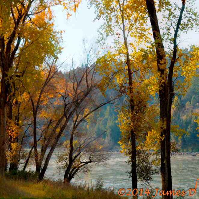 Fall colors on the south fork of snake river  usfupf