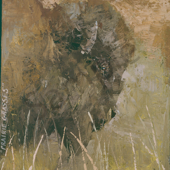 Prairie grasses anyiko