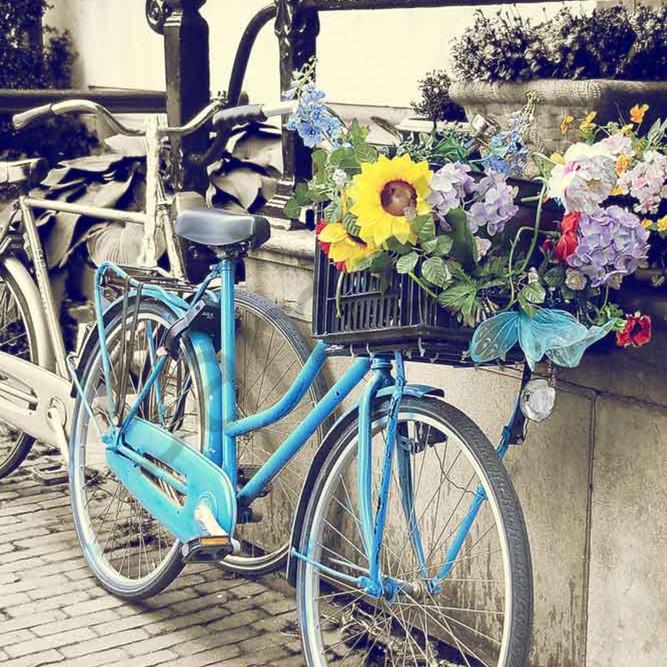 Blue bicycle s1kwb8
