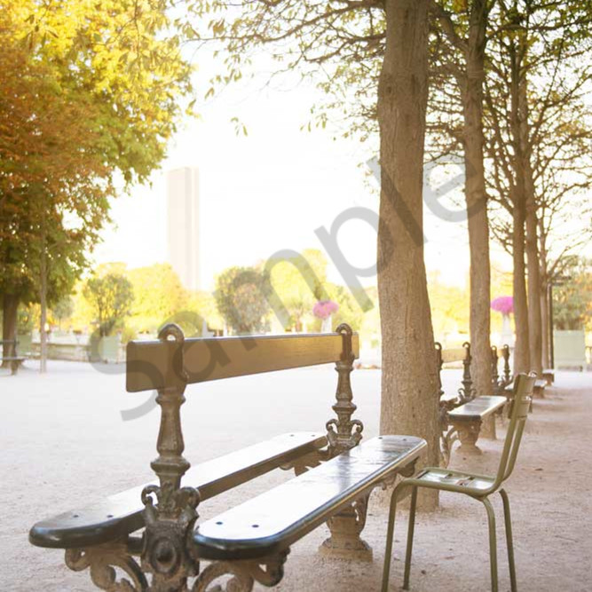 Bench in jardin du luxembourg 16x24 with signature qingqp