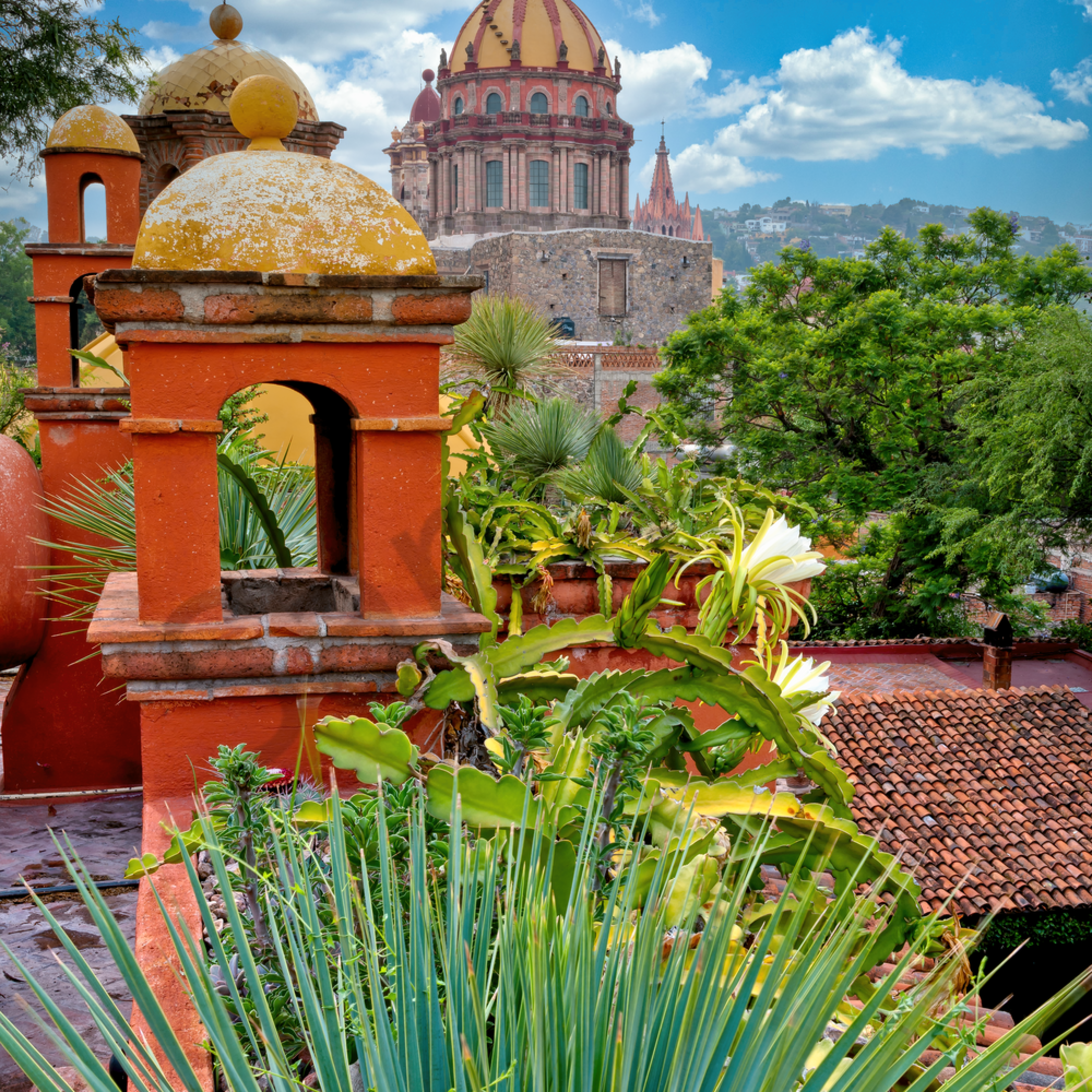 Hyders rooftop view of curch san miguel de allende mexico vurwit