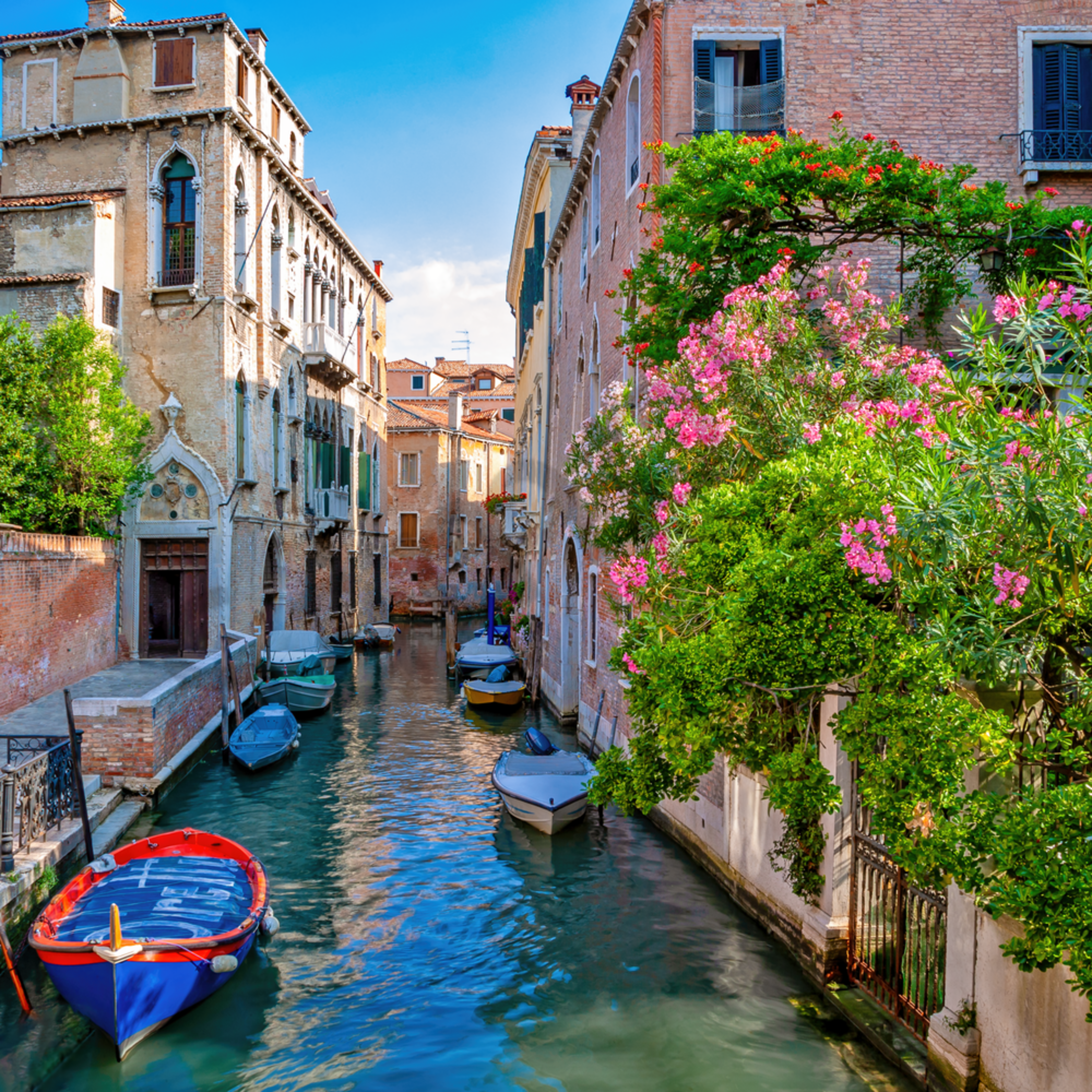 Canal and flowers venice italy ccnsde