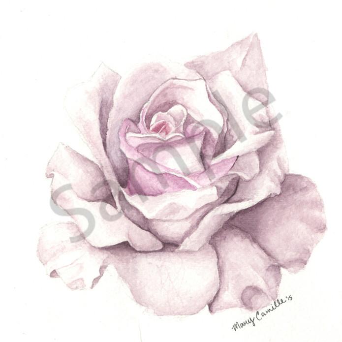 Spring bllom qt4pow